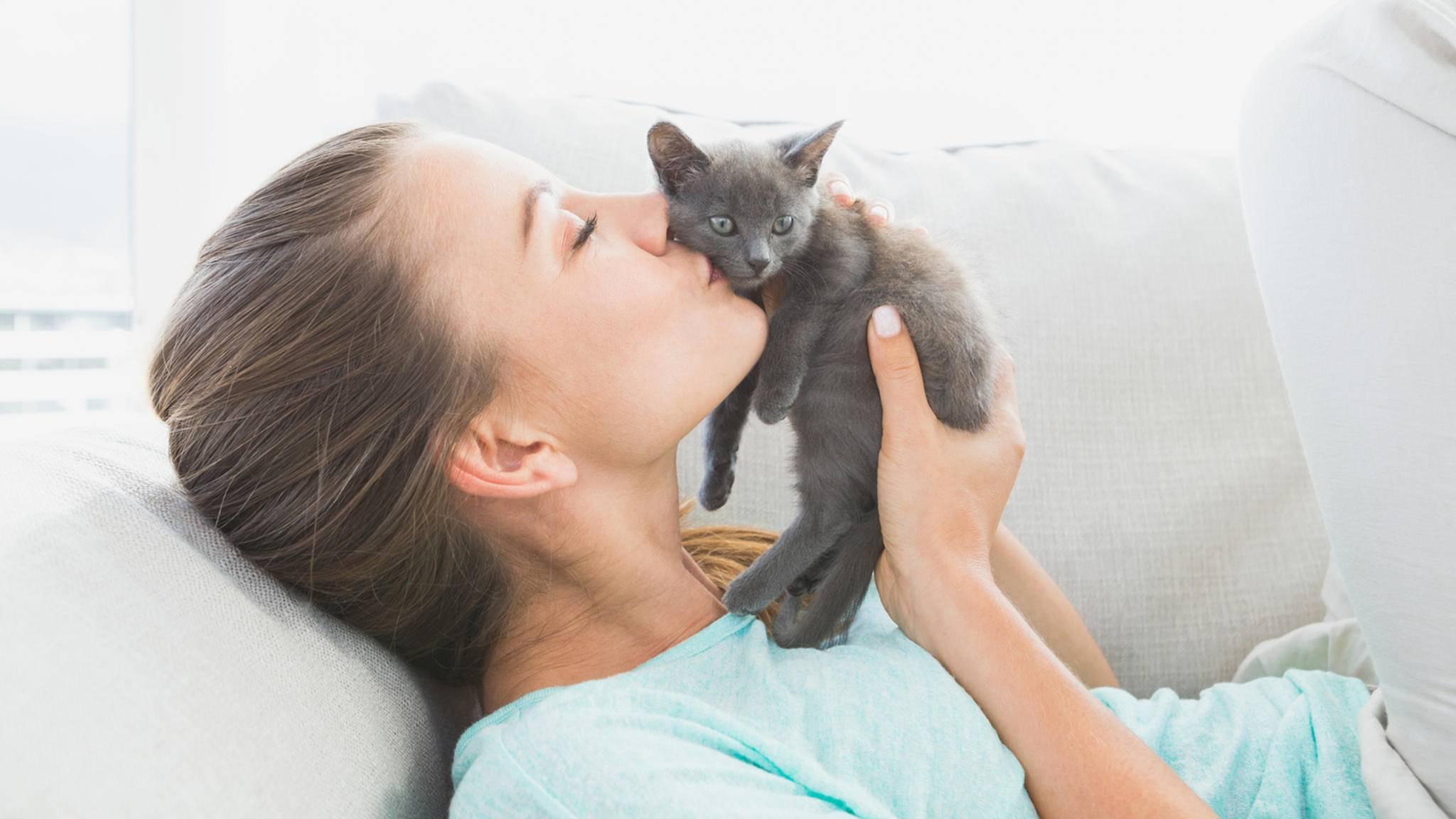 Es darf weiter geschmust werden: Katzen steigern das Risiko, psychische Störungen zu entwickeln, offenbar nicht.