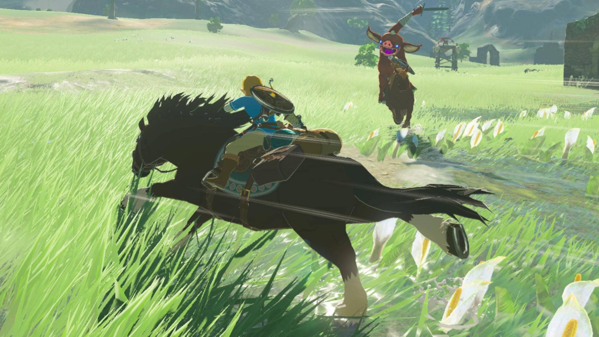 """Mehr Pferde in """"BotW 2""""? Vielleicht lassen sich die Entwickler dazu ja inspirieren ..."""