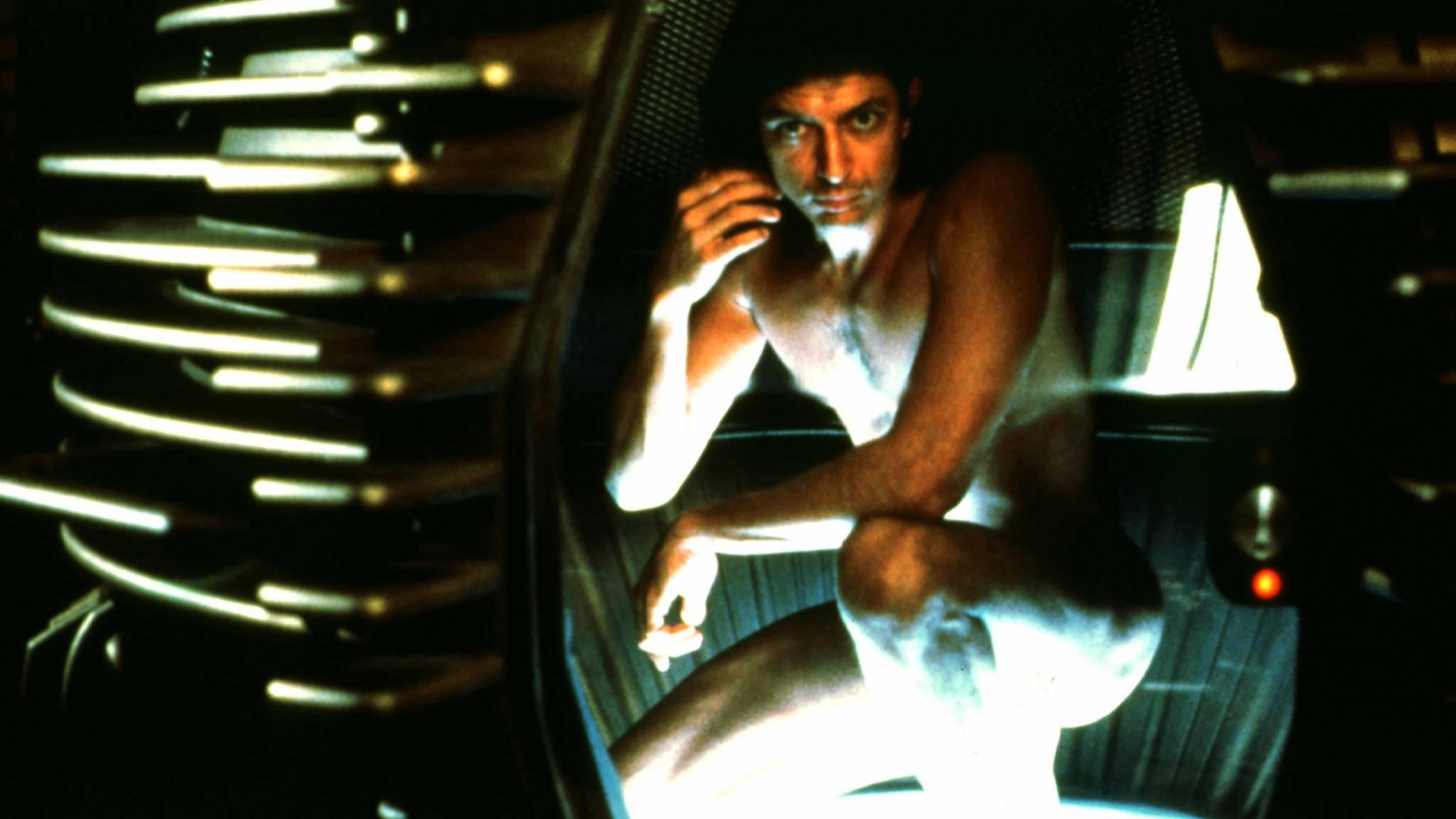 """Jeff Goldblum 1986 in Cronenbergs Version von """"Die Fliege""""."""