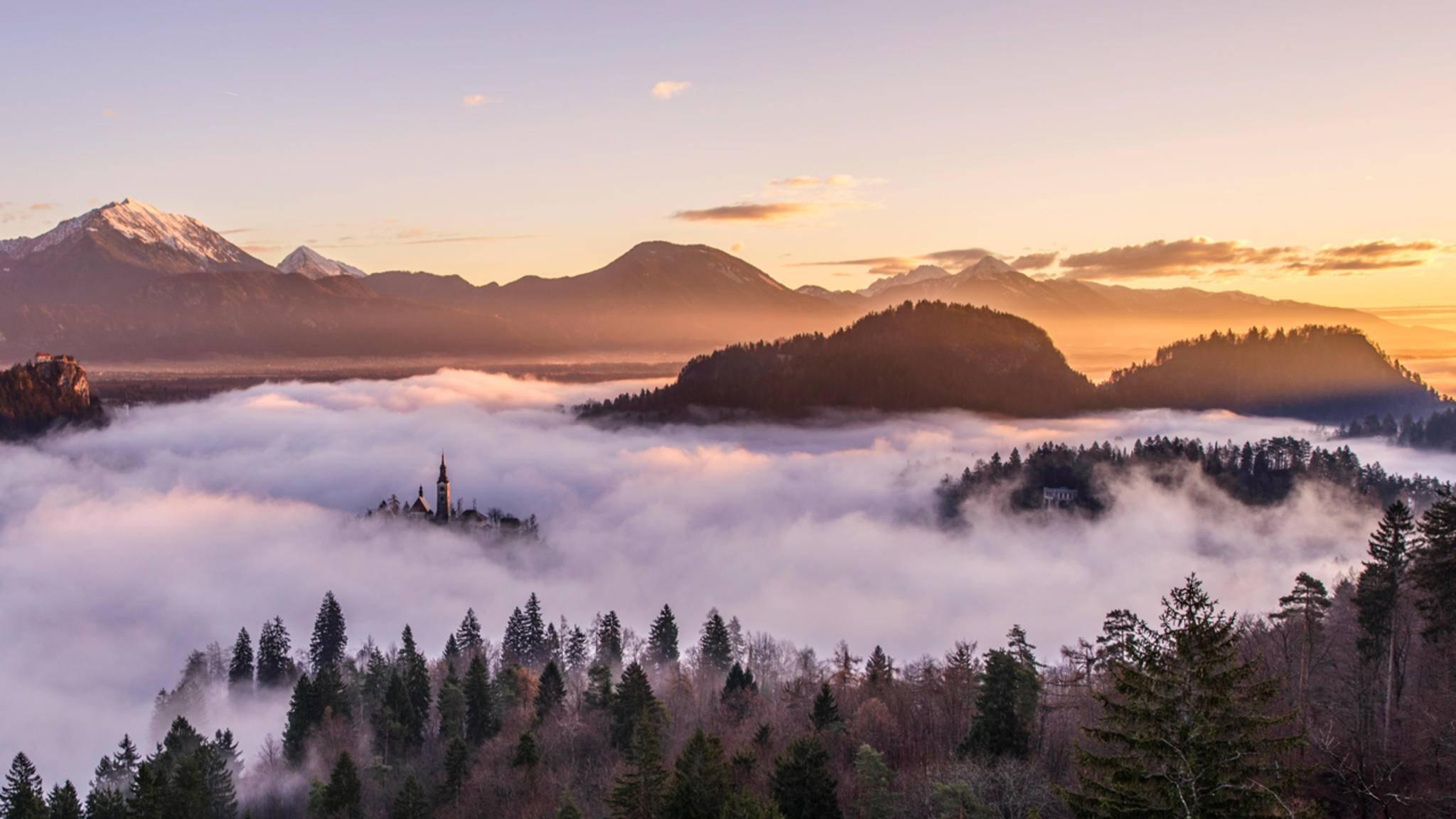 """""""Seltsam, im Nebel zu wandern! Einsam ist jeder Busch und Stein, kein Baum sieht den anderen, jeder ist allein."""" (Hermann Hesse)"""