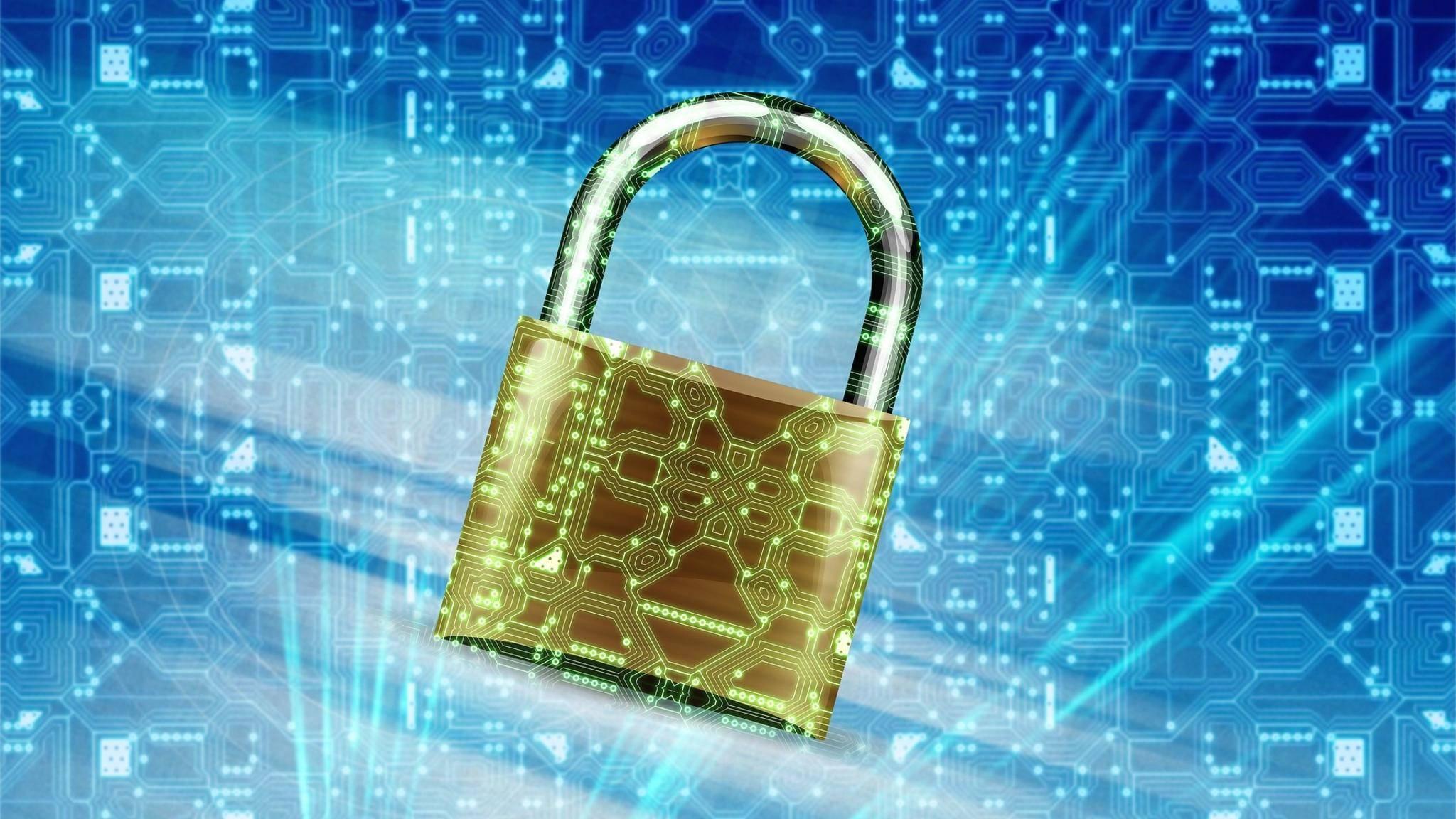 Sicherheit Security Schloss Malware Virus