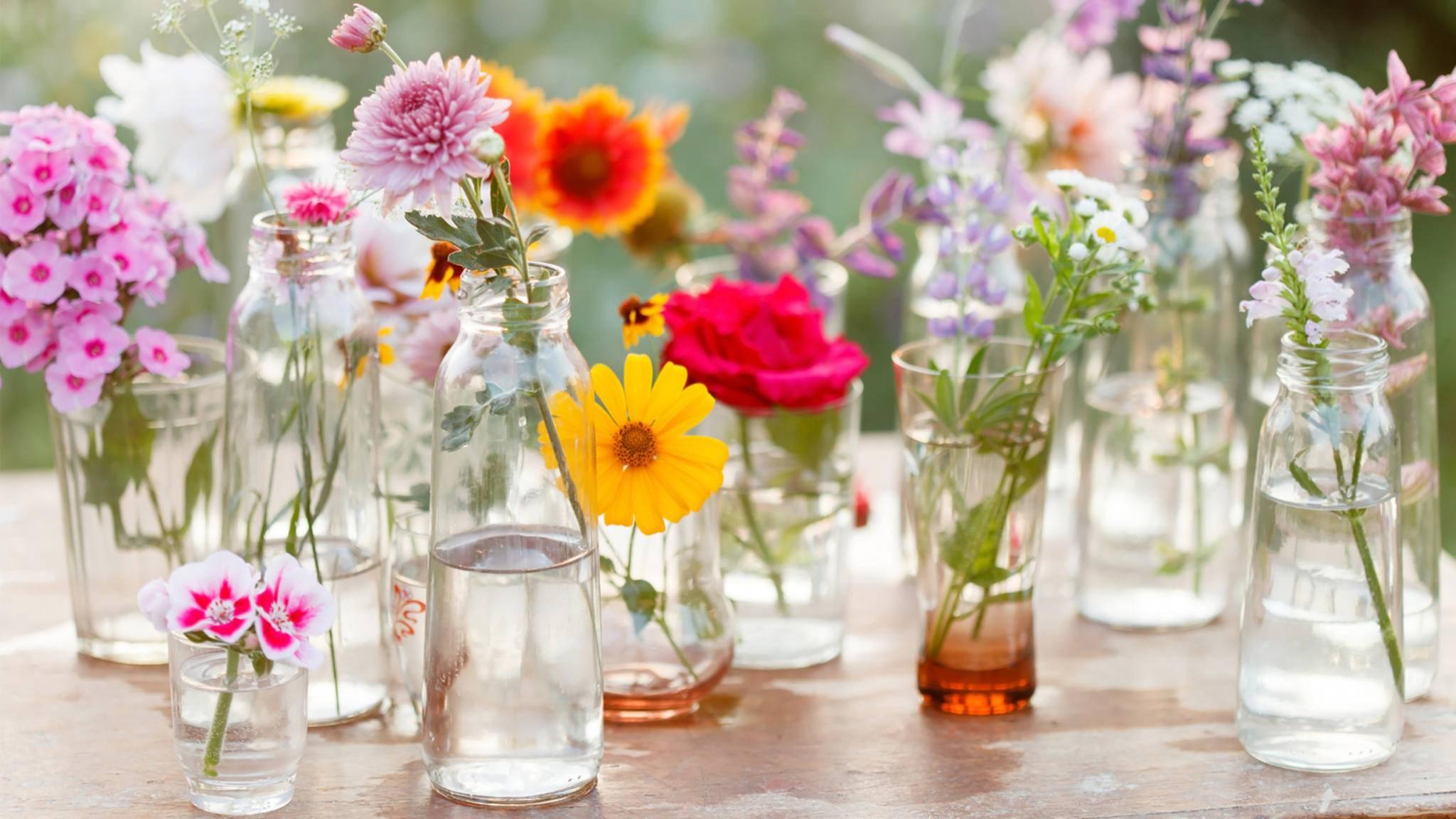 Frühlingsblumen sind die perfekte Deko und daher wie geschaffen für die verschiedensten DIY-Projekte.