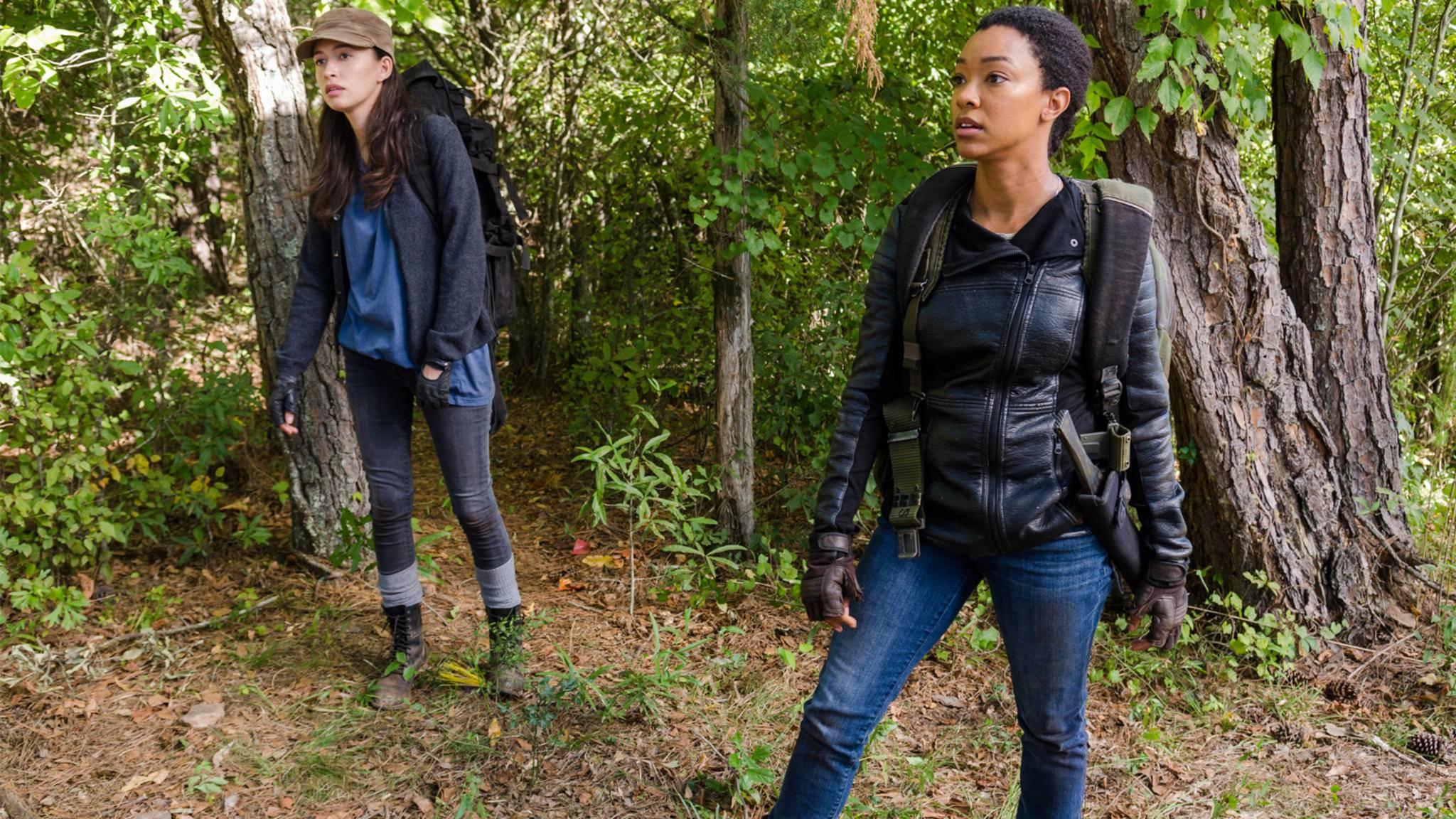 """Rosita und Sasha ziehen in Staffel 7 von """"The Walking Dead"""" auf eigene Faust los."""