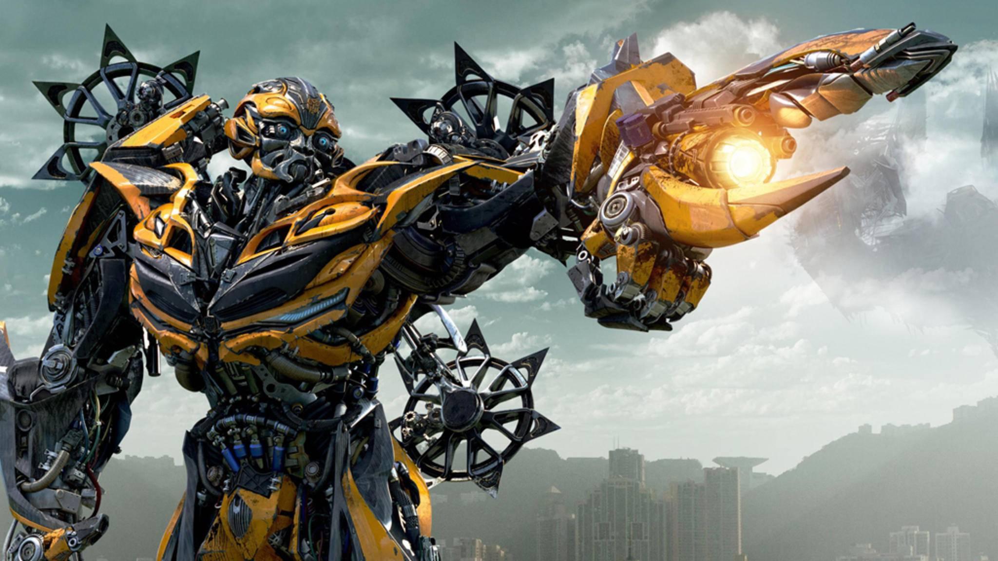 Bumblebee dürfte ziemlich sicher auch im neuen Film mitmischen ...