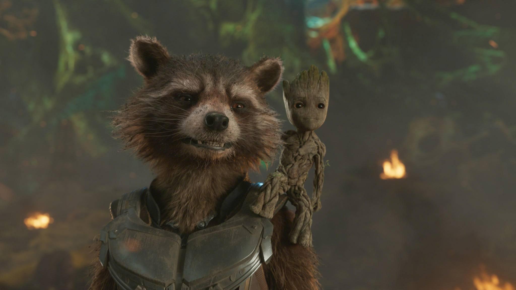 """Seit """"Guardians of the Galaxy Vol. 2"""" ist Groot gewachsen ... - doch seine Worte an Rocket zeigen, dass der Waschbär auch in """"Infinity War"""" seine Bezugsperson ist."""