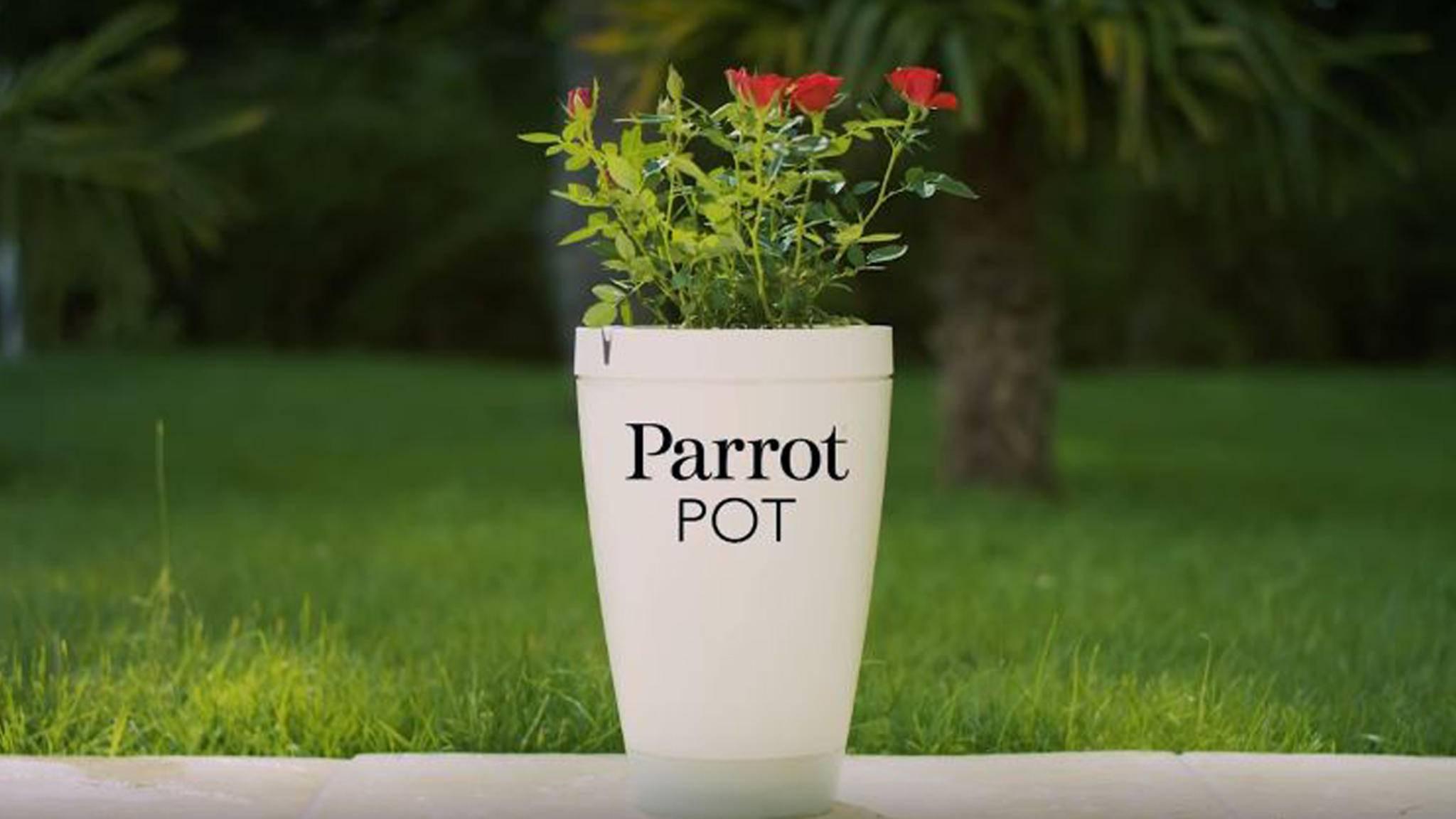 Der Parrot Pot ist intelligenter Blumentopf und Pflanzensitter in einem.