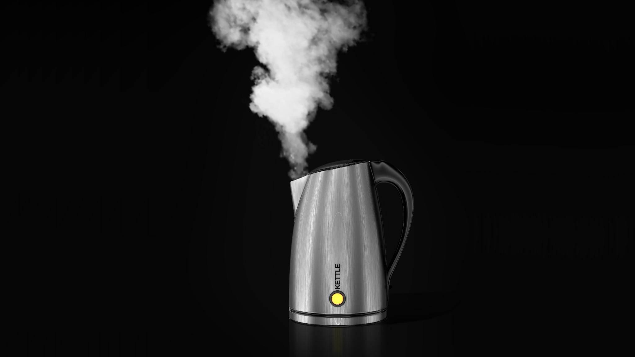 Damit der Wasserkocher auch weiter fröhlich dampft, solltest Du ihn regelmäßig entkalken.