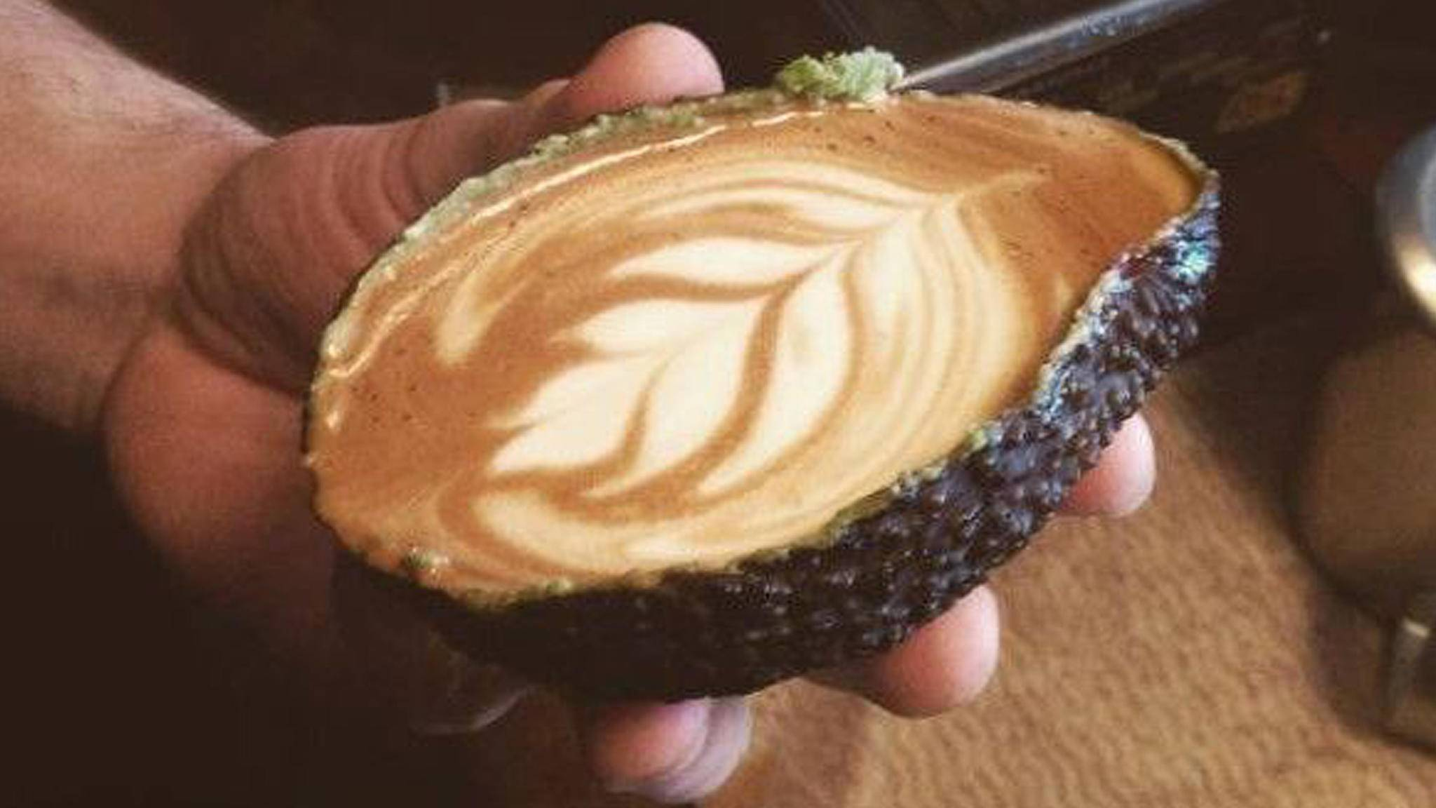 Avolatte Hipster trinken ihren Kaffee jetzt aus der Avocado