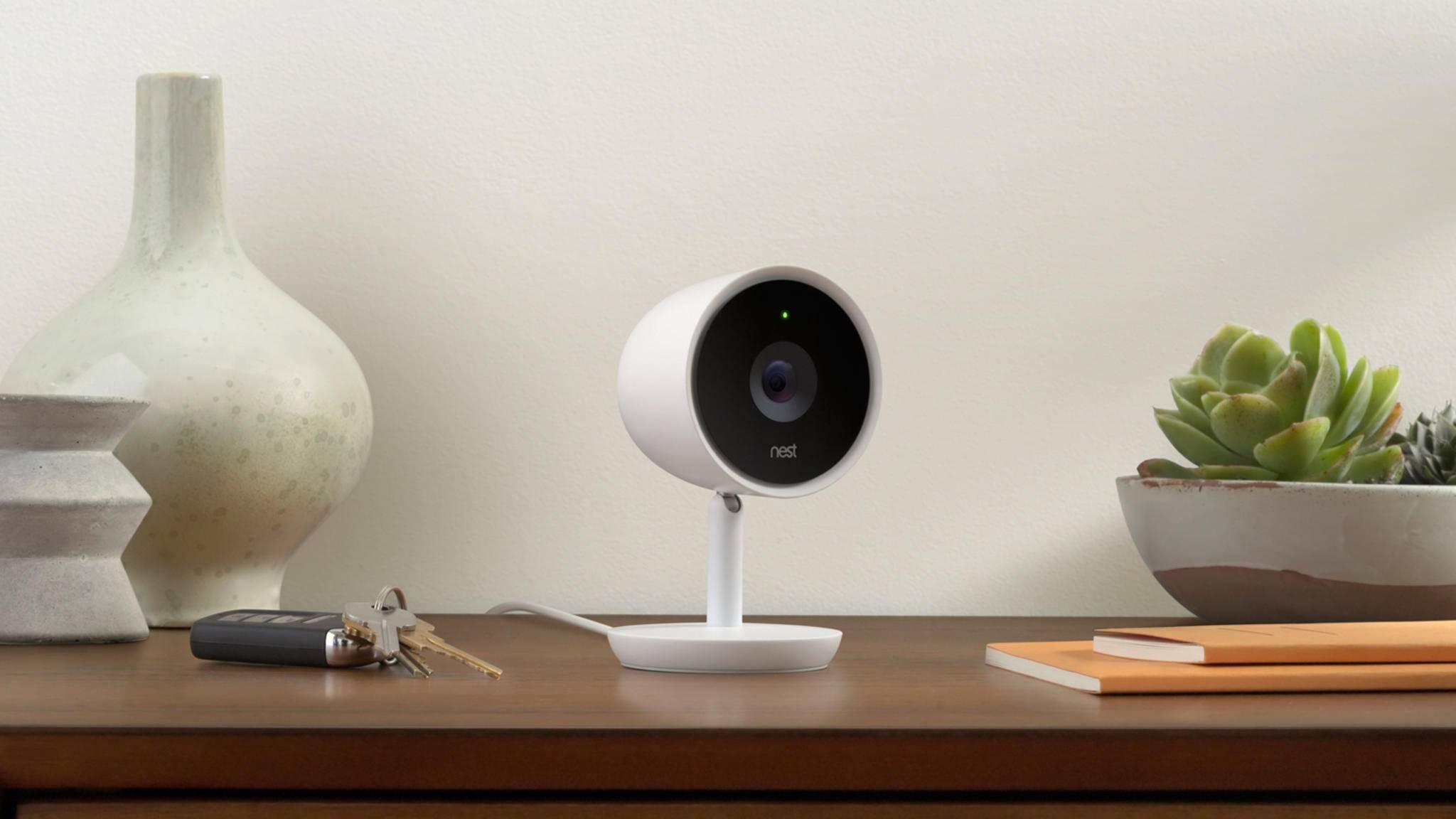 Die Nest Cam IQ hat alles im Blick – dank digitalem Zoom und 4K-Video-Sensor auch mit hochauflösenden Nahaufnahmen.