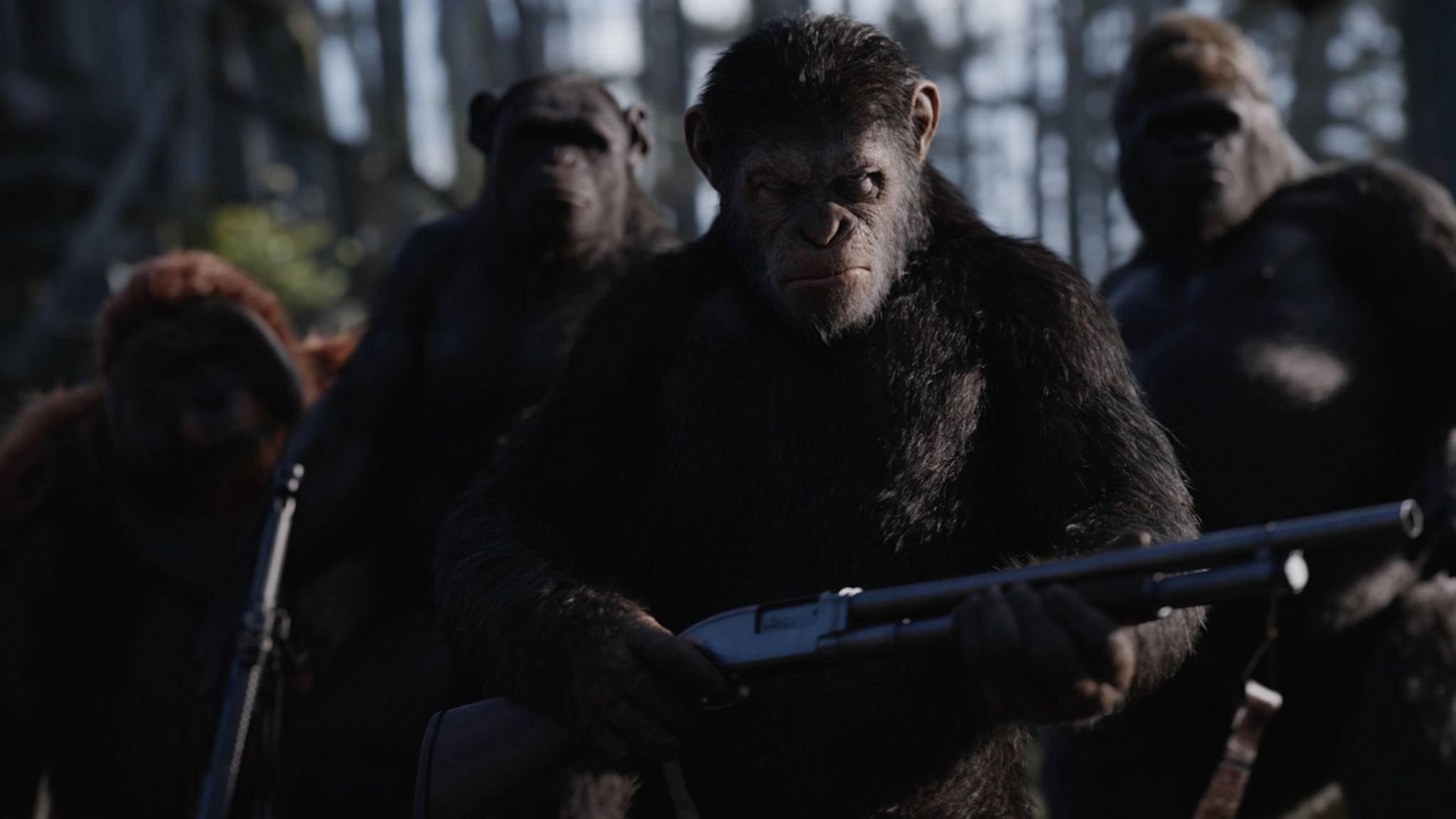 """Es wird nachgeladen! Die """"Planet der Affen""""-Reihe ist noch nicht am Ende ..."""