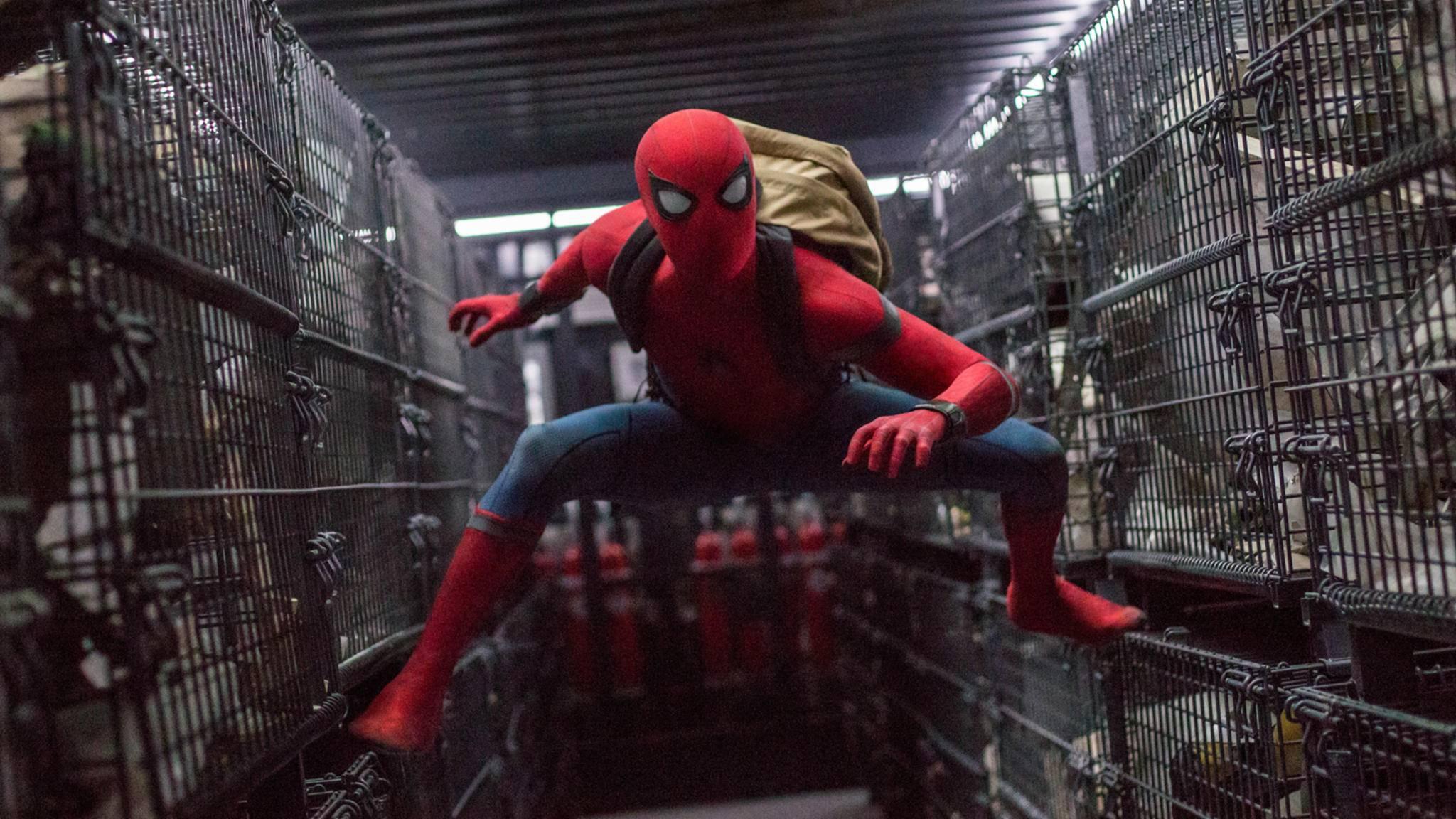 """Spider-Man schwingt sich nach seinem Debüt in """"Civil War"""" und einem Solo-Abenteuer wieder zurück ins Team."""