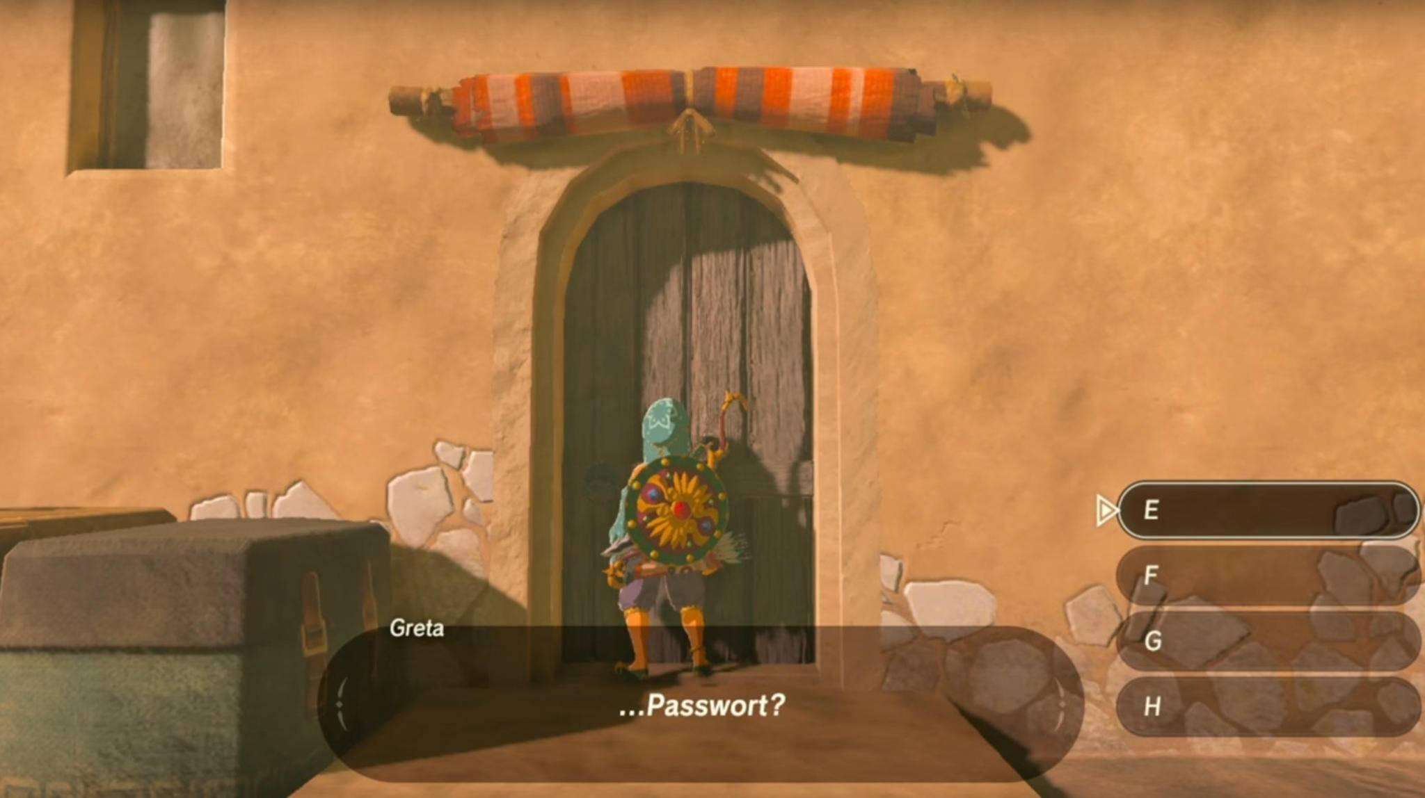 Ohne das richtige Passwort für den Geheim-Club steht Link in Gerudo-Stadt vor verschlossener Tür.