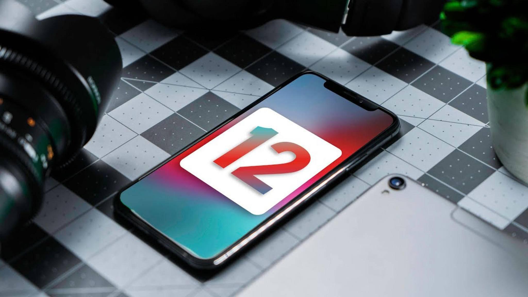 Die Entwickler-Beta von iOS 12 steht ab sofort zum Download bereit.