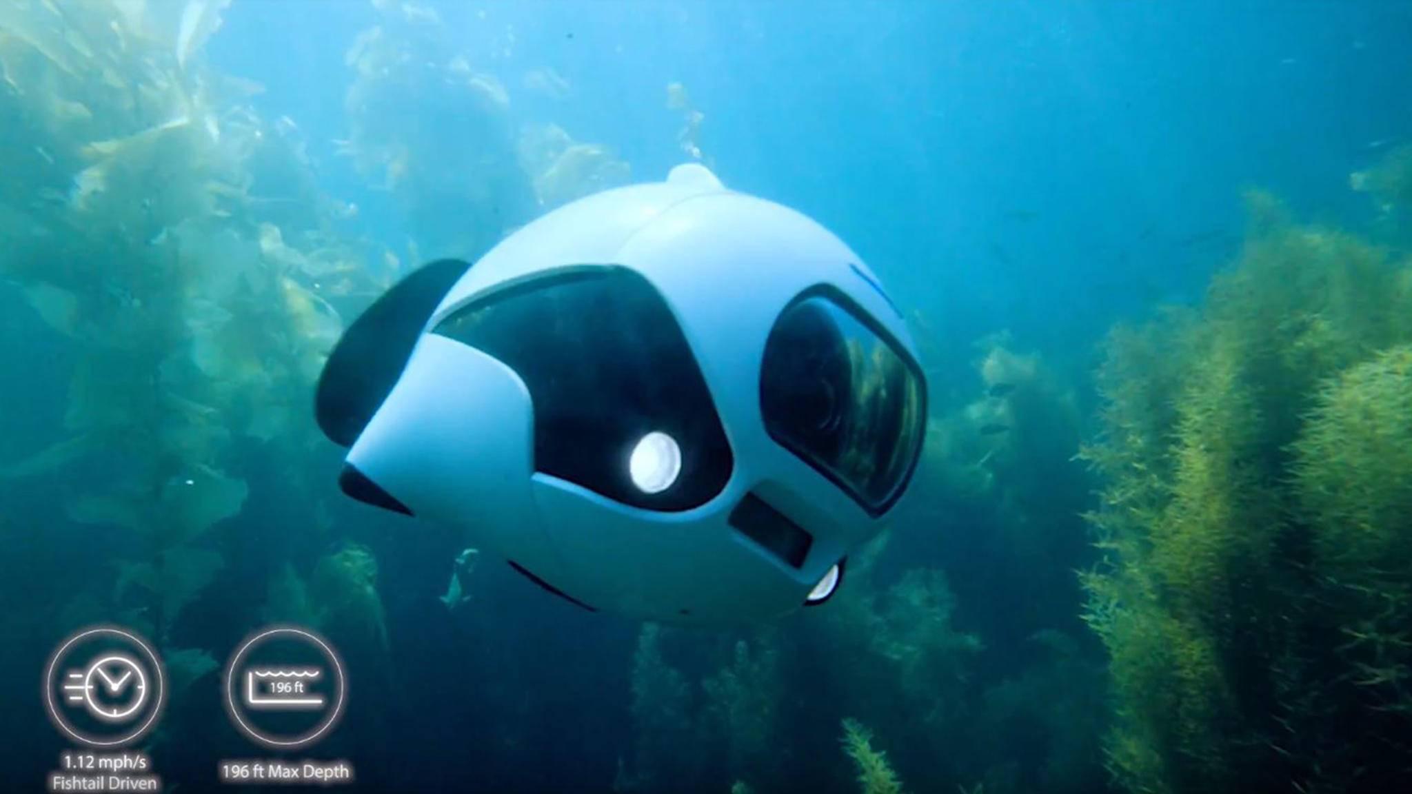 Ja, was schwimmt denn da? Biki soll Unterwasseraufnahmen eine ganz neue Dimension verleihen.