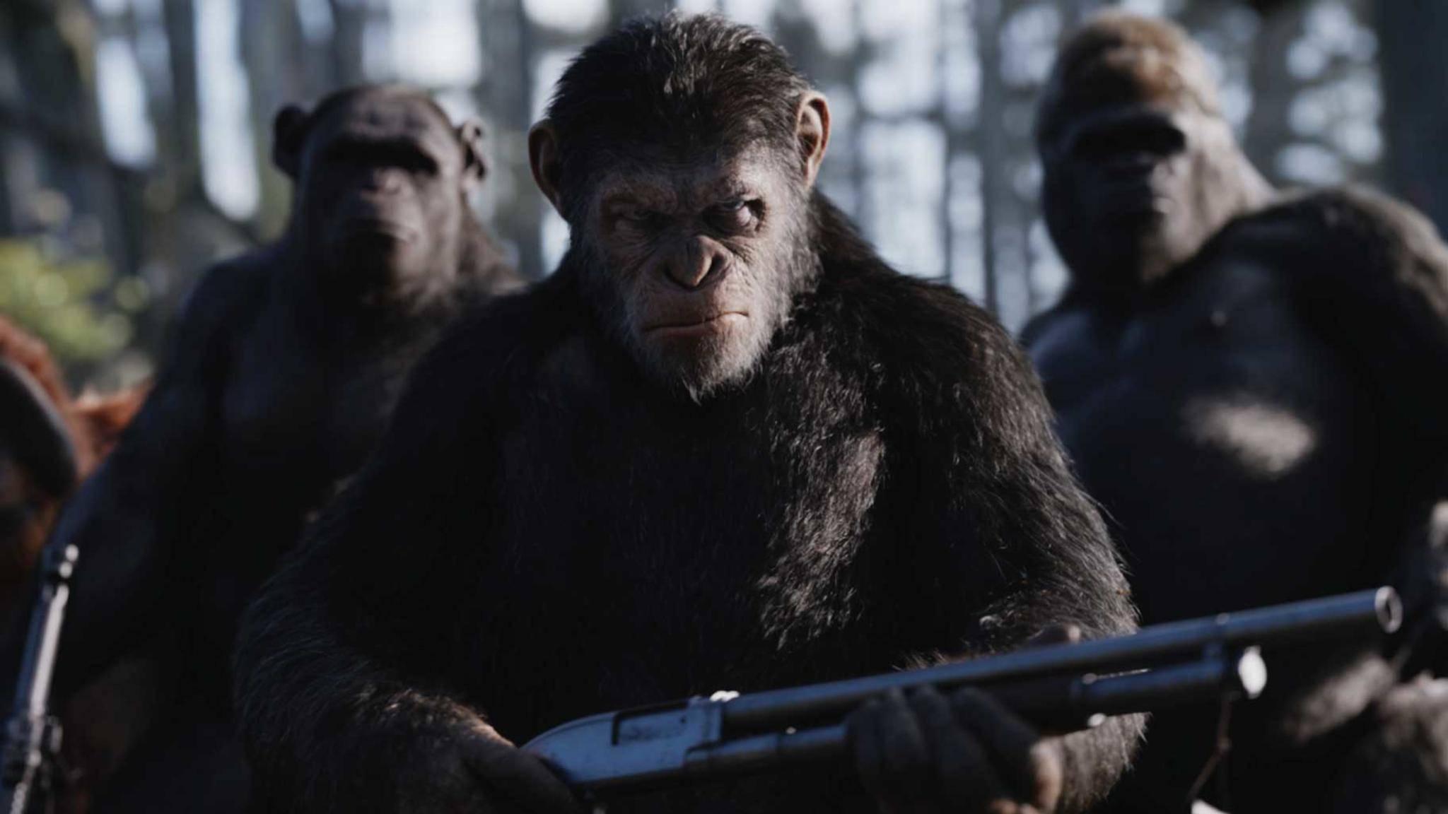 """""""Prevolution"""", """"Revolution"""", """"Survival"""": Wie wird es mit """"Planet der Affen"""" weitergehen?"""