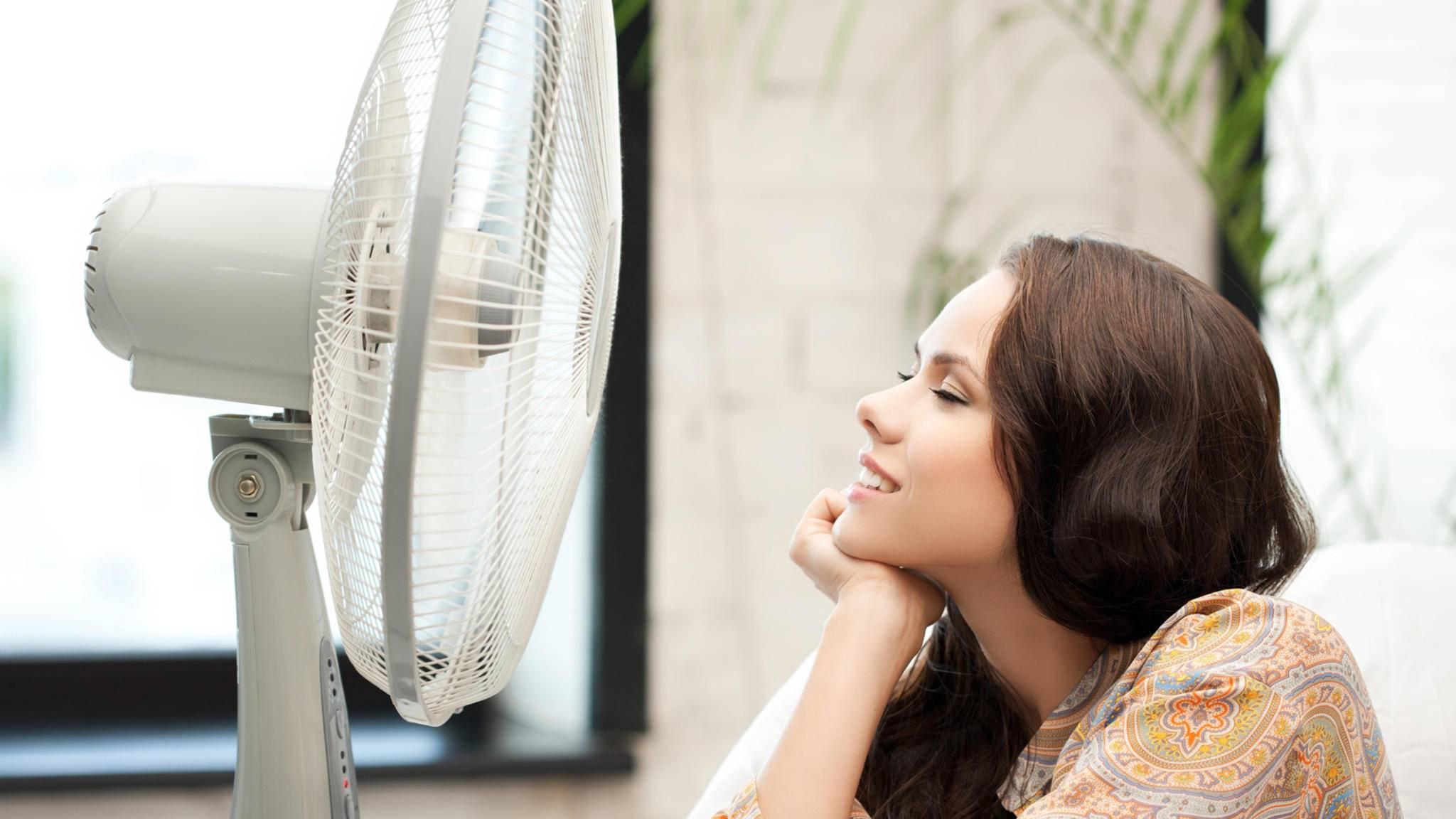 Nicht nur ein Ventilator kann gegen hohe Temperaturen in den eigenen vier Wänden helfen.