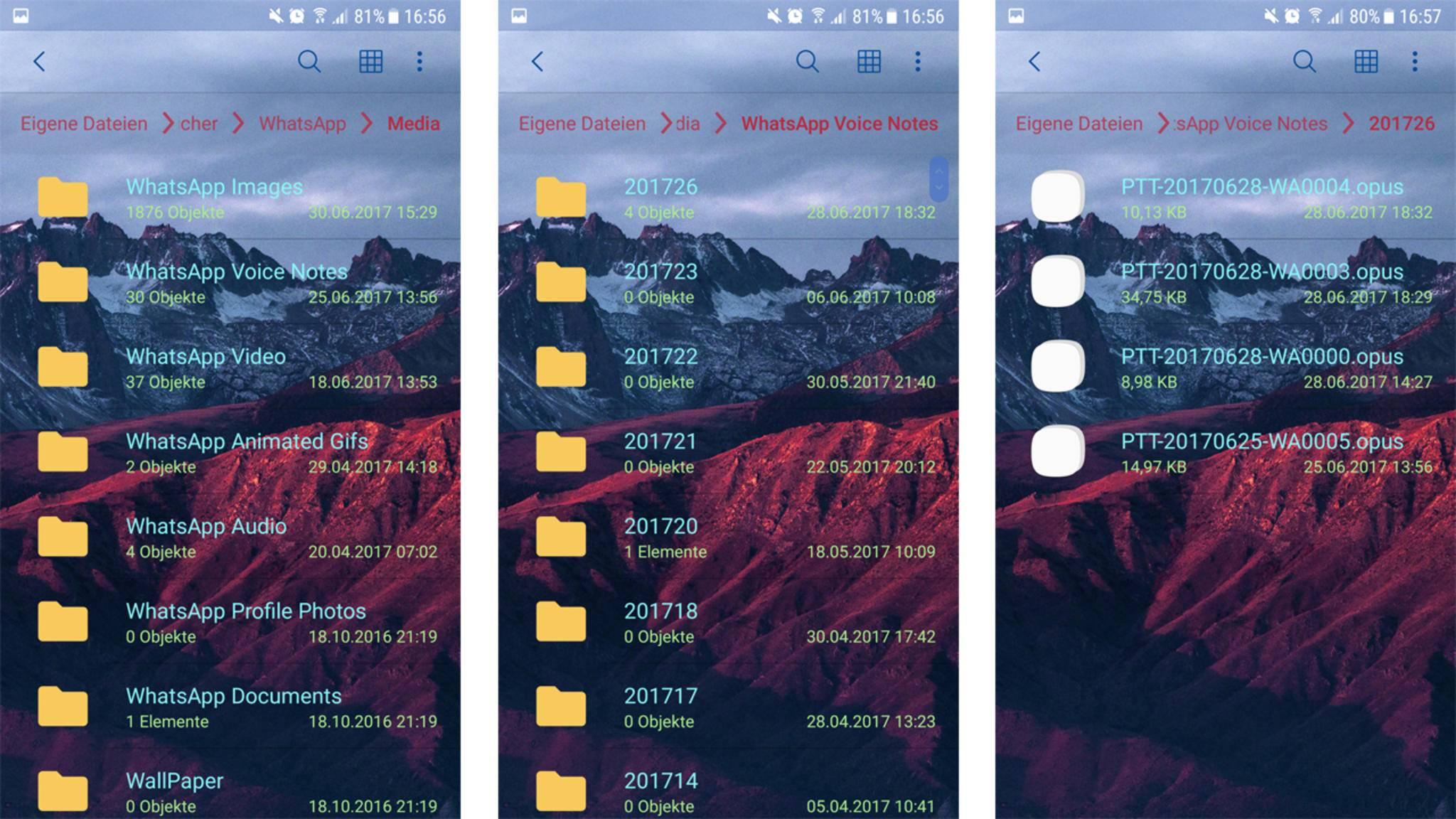 Whatsapp Fotos Auf Sd Karte Speichern.So Speichern Sie Sprachnachrichten Auf Android Elorme