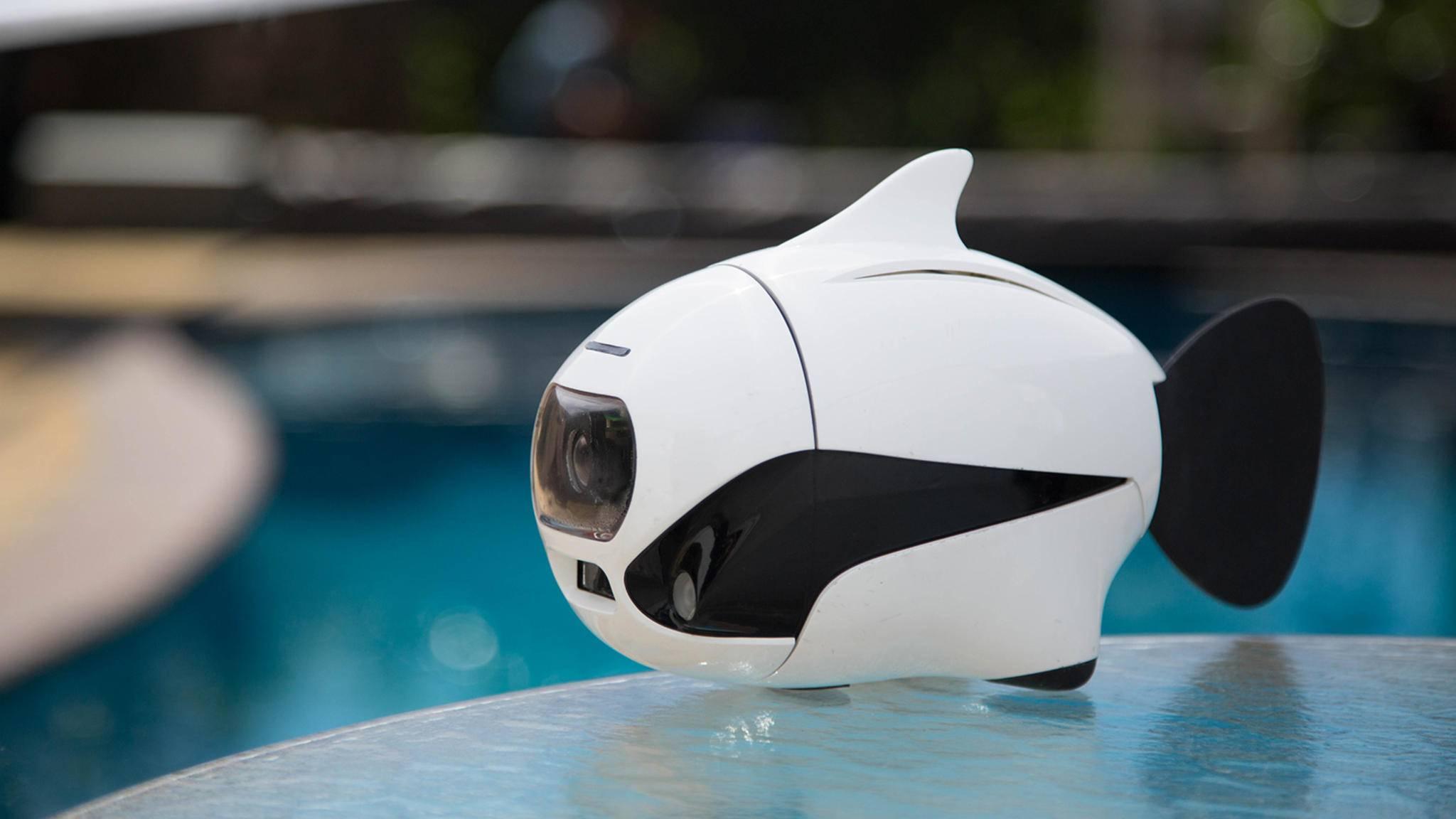 BIKI: die Unterwasser-Drohne wird jetzt bei Kickstarter angeboten.