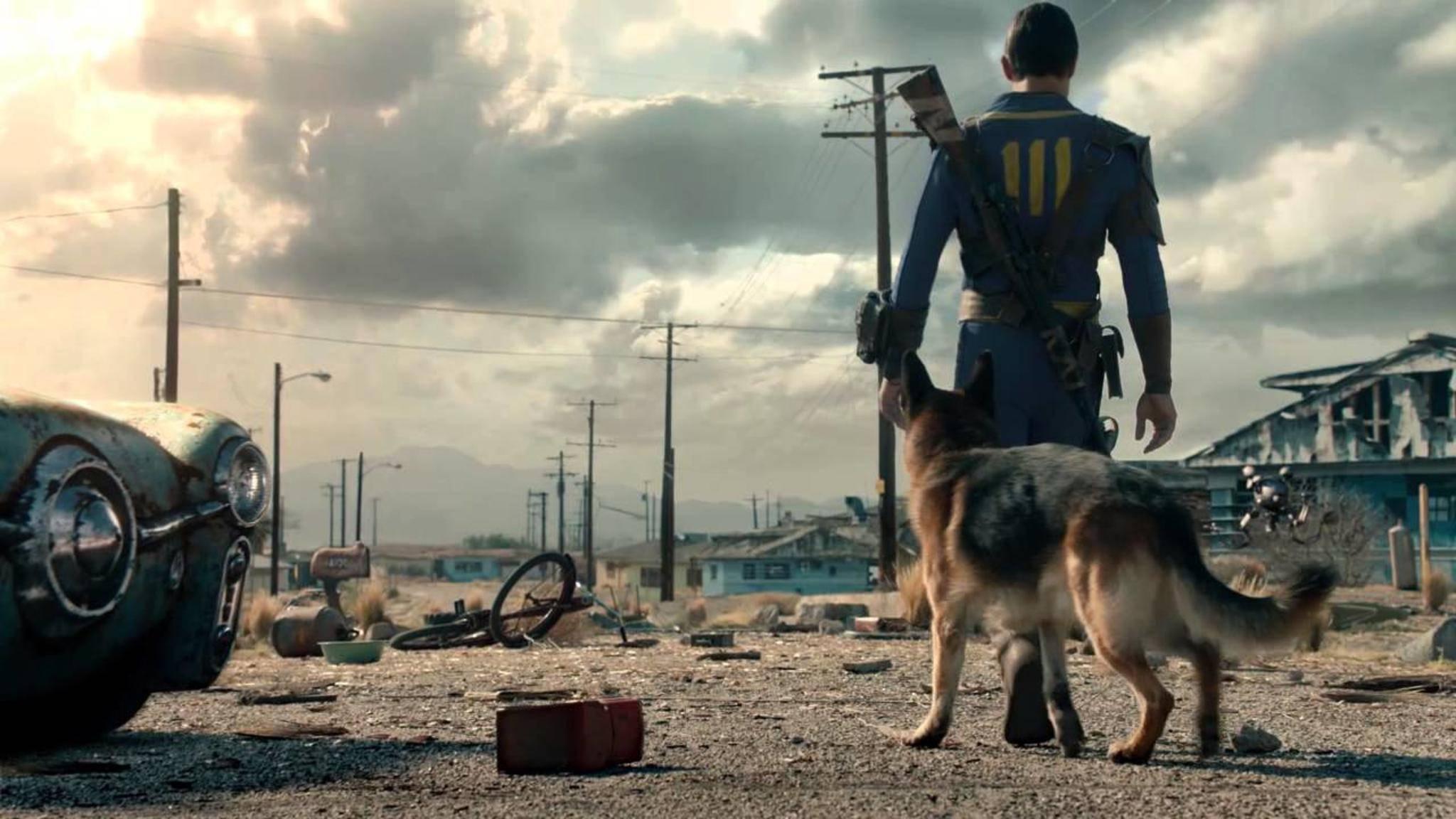 """Hunde-Begleiter in """"Fallout 76""""? Erstmal nicht verfügbar."""