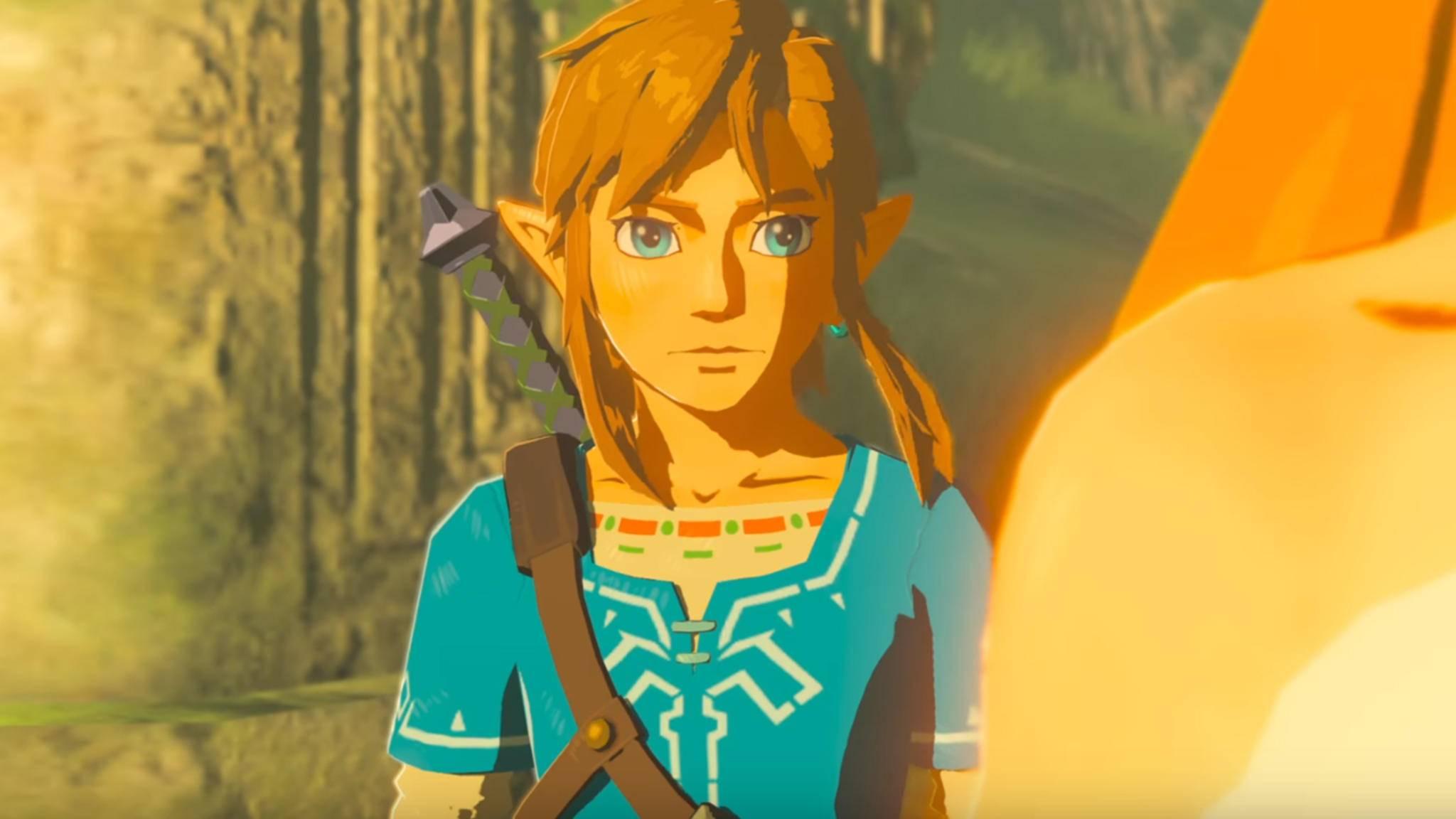 """Im nächsten DLC für """"The Legend of Zelda: Breath of the Wild"""" spielst Du immer noch Link."""