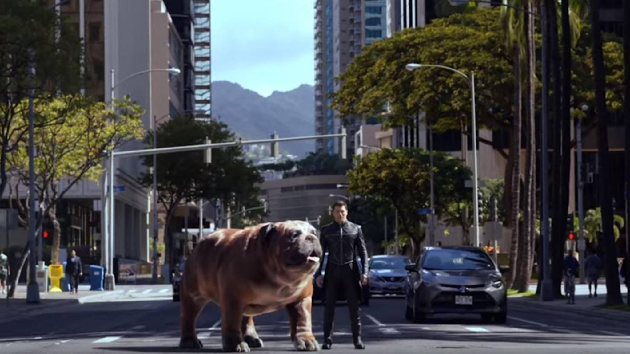 Von Teleport-Hund Lockjaw fehlt auf den neuen Postern zwar jede Spur, doch König Black Bolt (rechts) zeigt sich den irdischen Fans einmal mehr.