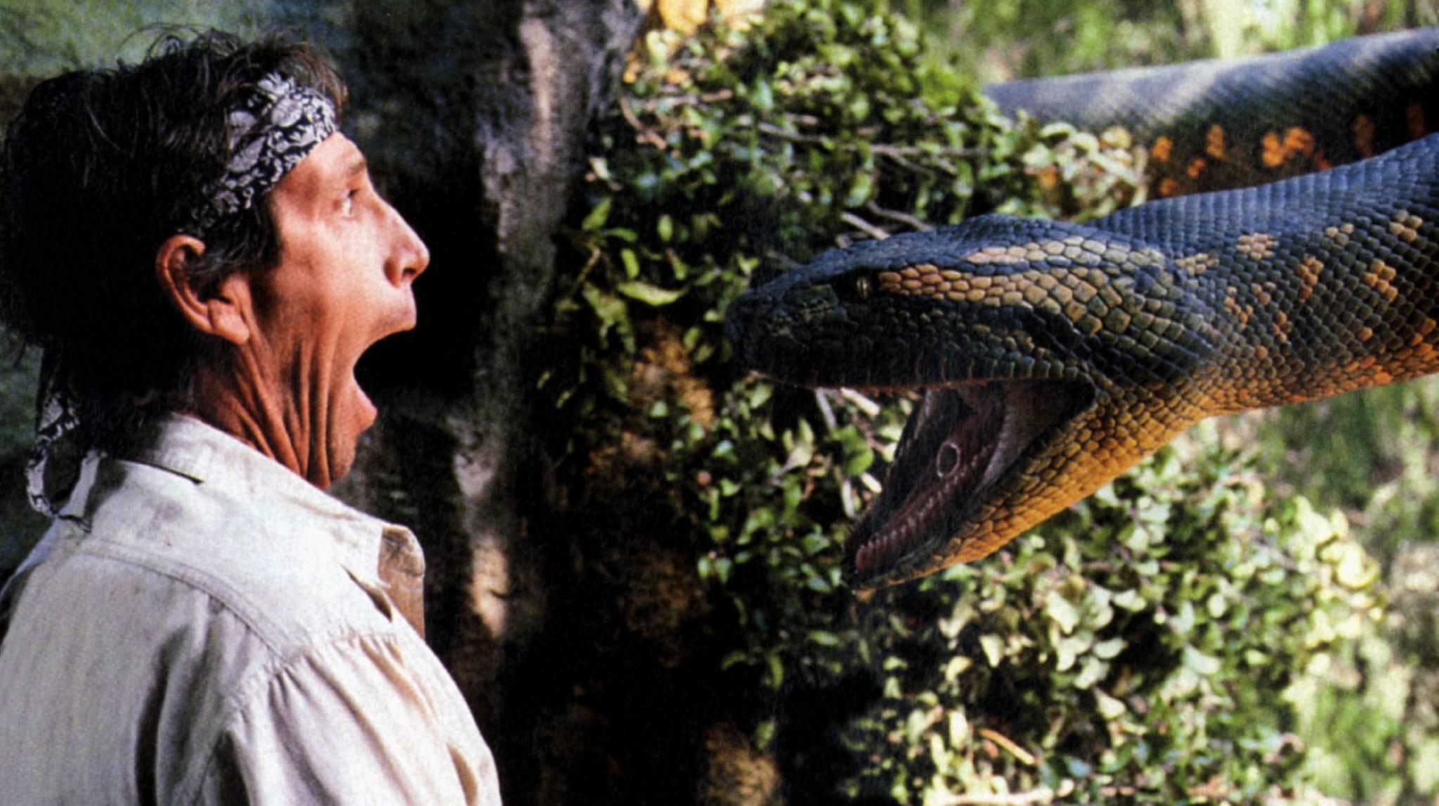 Auge in Auge mit der Bestie – das kommt in Schlangenfilmen üblicherweise erst ab einer gewissen Größe des Reptils vor.