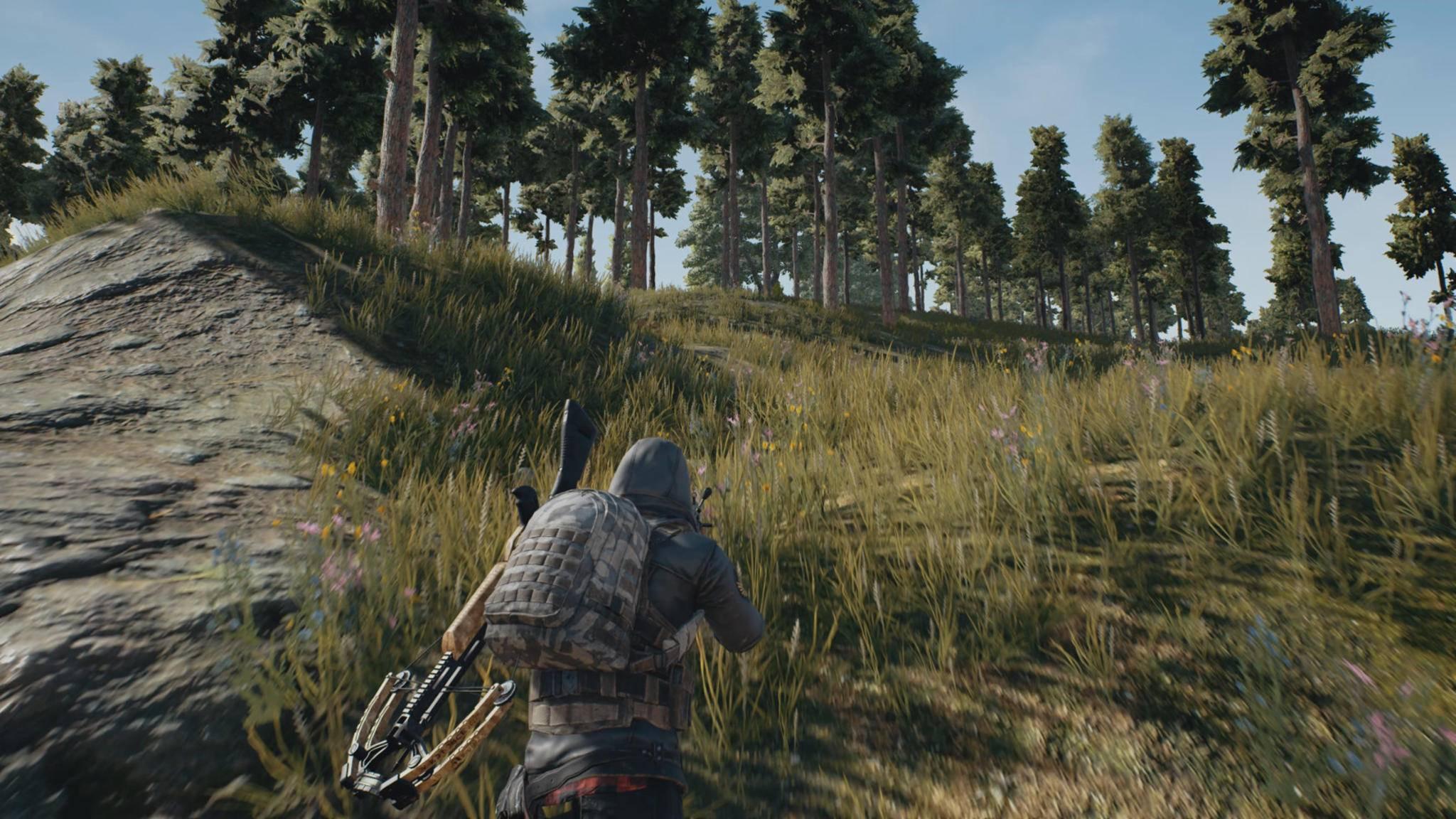"""Leise durch die Wildnis schleichen und bloß nicht sterben – das ist in """"Playerunknown's Battlegrounds"""" und vielen anderen Survival-Games Dein Tagwerk."""