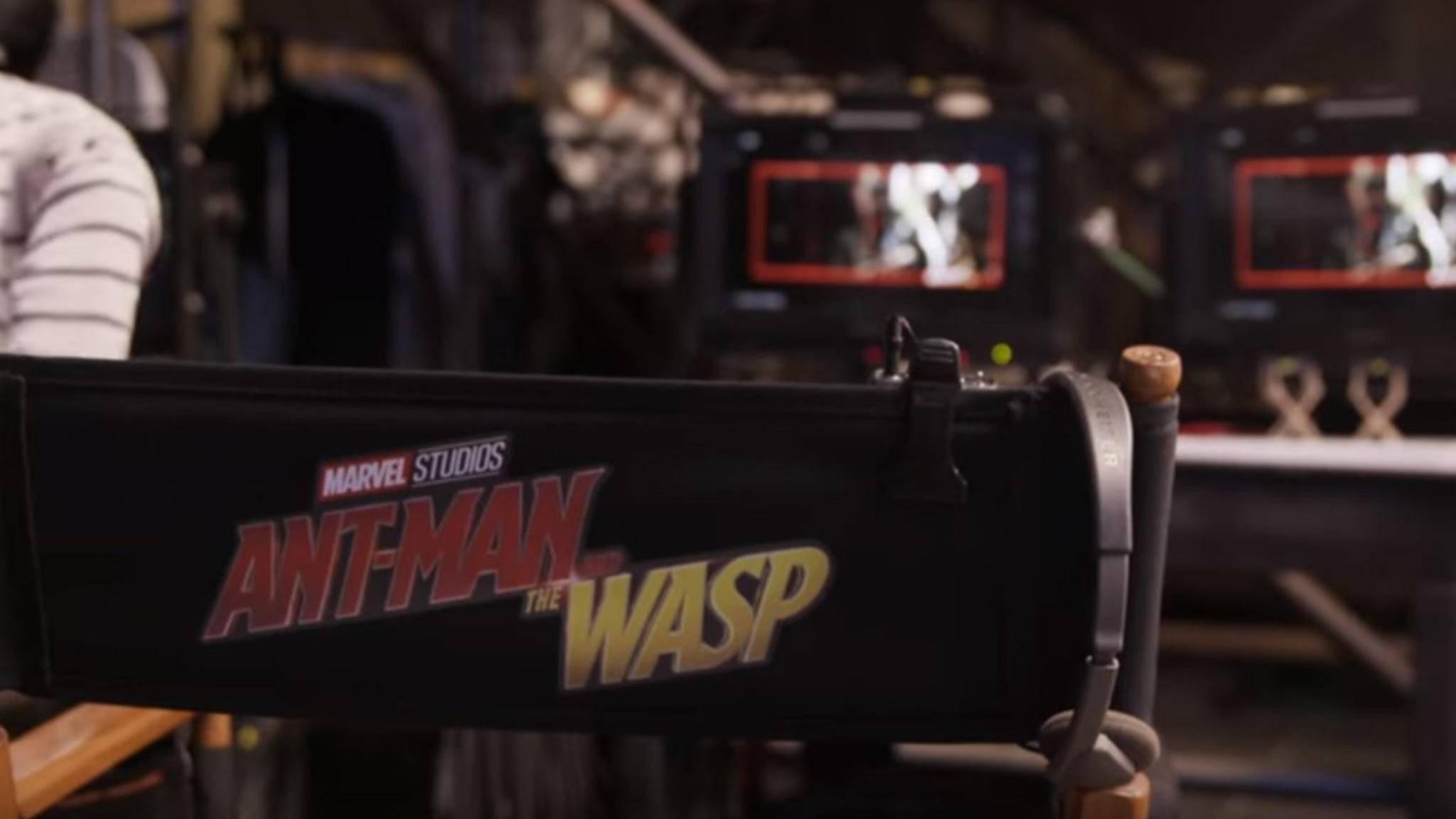 """Die Arbeiten an """"Ant-Man 2"""" laufen auf Hochtouren."""