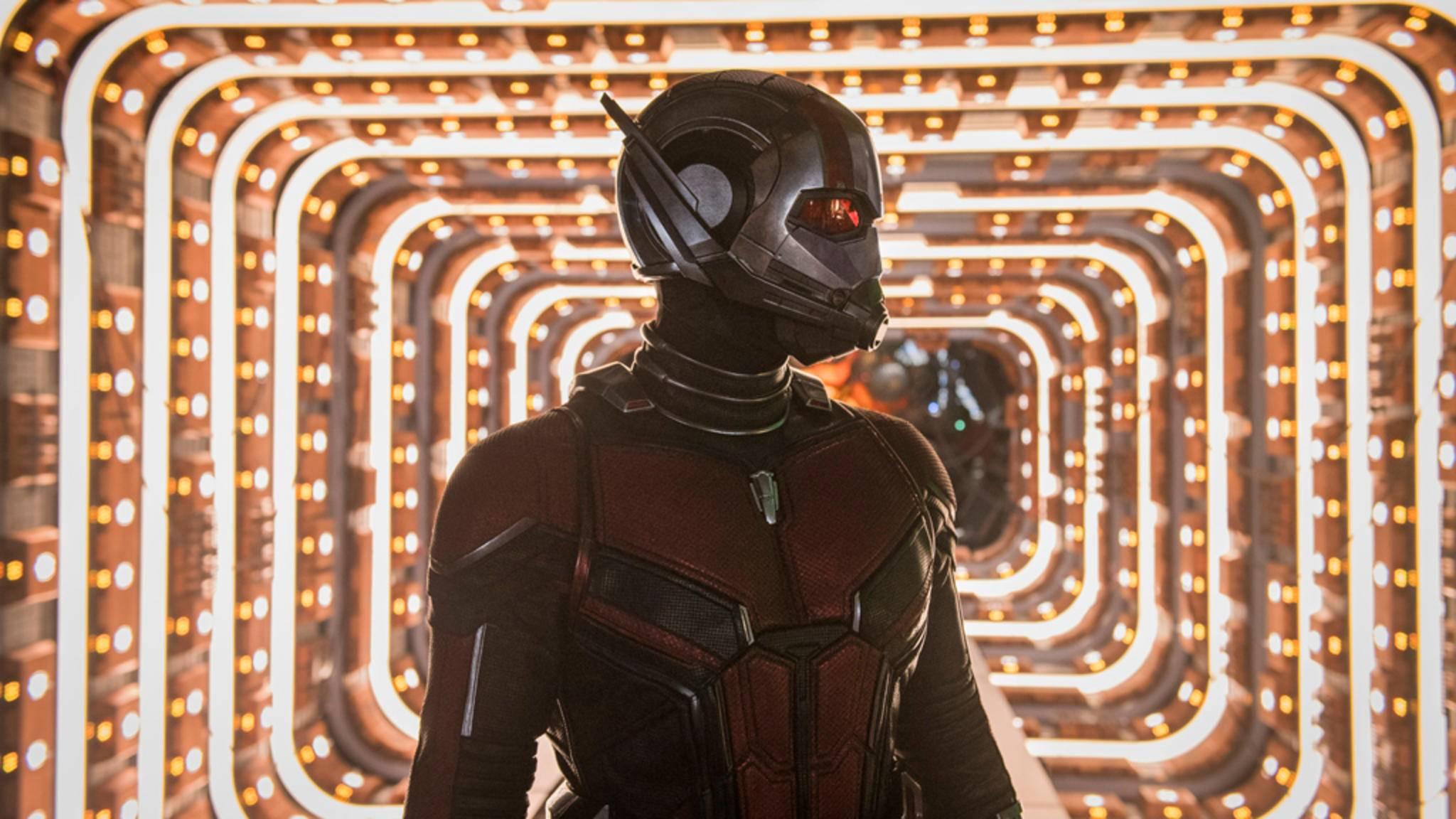 """Marvel wird die """"Ant-Man""""-Trilogie vollenden!"""