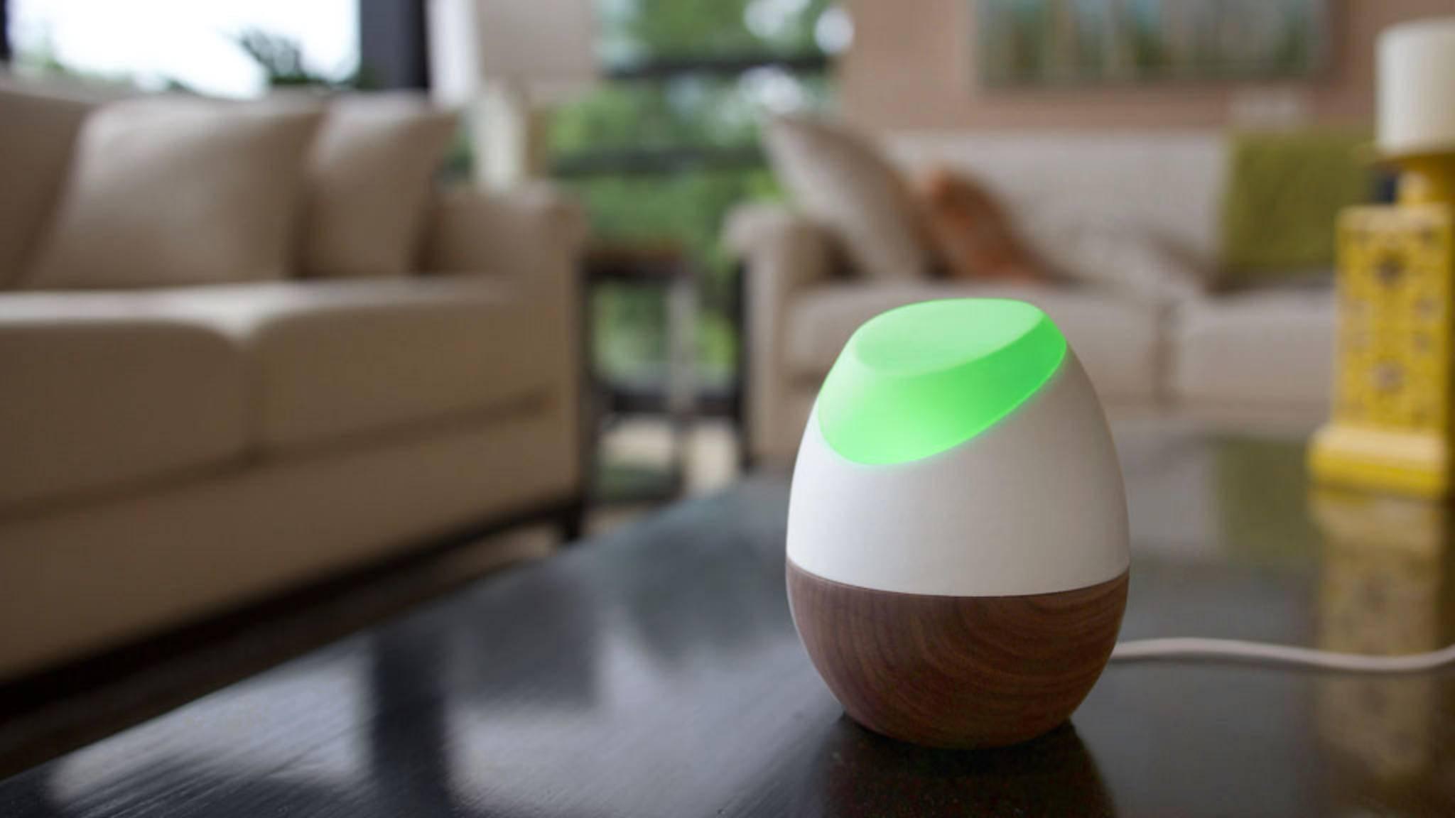 Alles im grünen Bereich: Glow soll helfen den Stromverbrauch zu senken – zu Gunsten des Geldbeutels und der Umwelt.