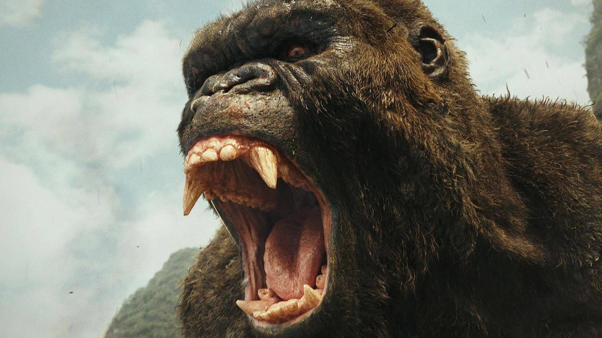 """""""Hey, Godzilla, hörst du mich? Jetzt gibt's was auf die Ohren!"""""""