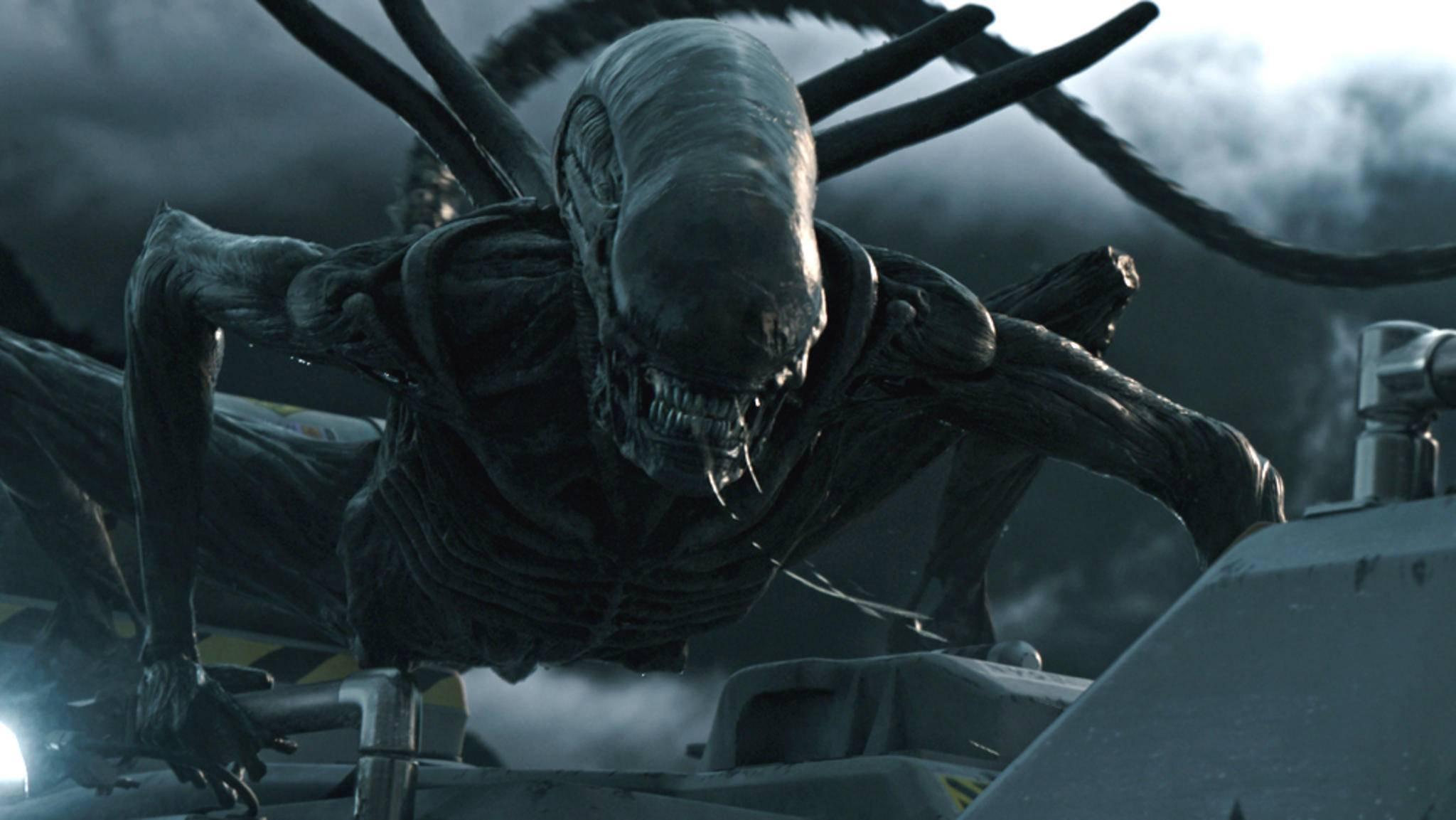 """Wie kam es eigentlich zu diesem Moment? Wir führen Dich durch die inhaltlich richtige Reihenfolge der """"Alien""""-Filmreihe."""