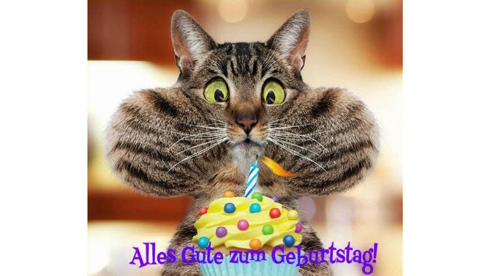 Geburtstags Animation Fur Whatsapp Vorlagen