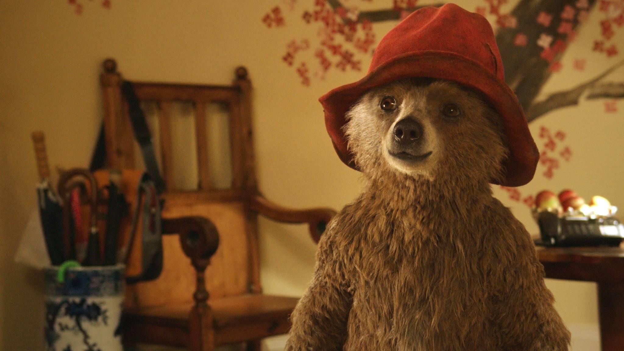 Dem tollpatschigen Teddy Paddington kann man nicht lange böse sein.