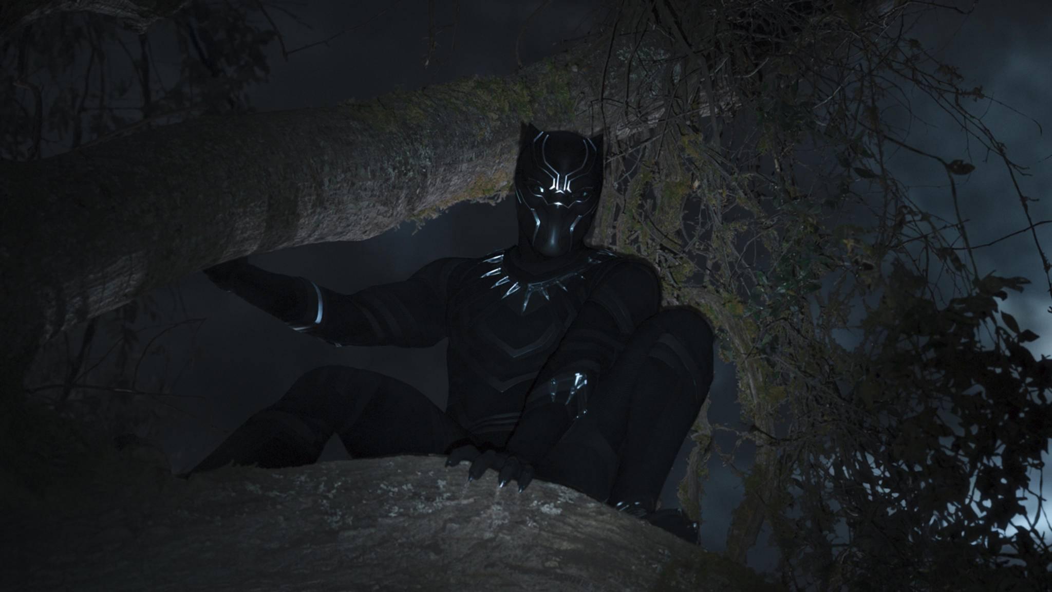 """""""Black Panther"""" lauert noch vor Kinostart auf Rekorde."""