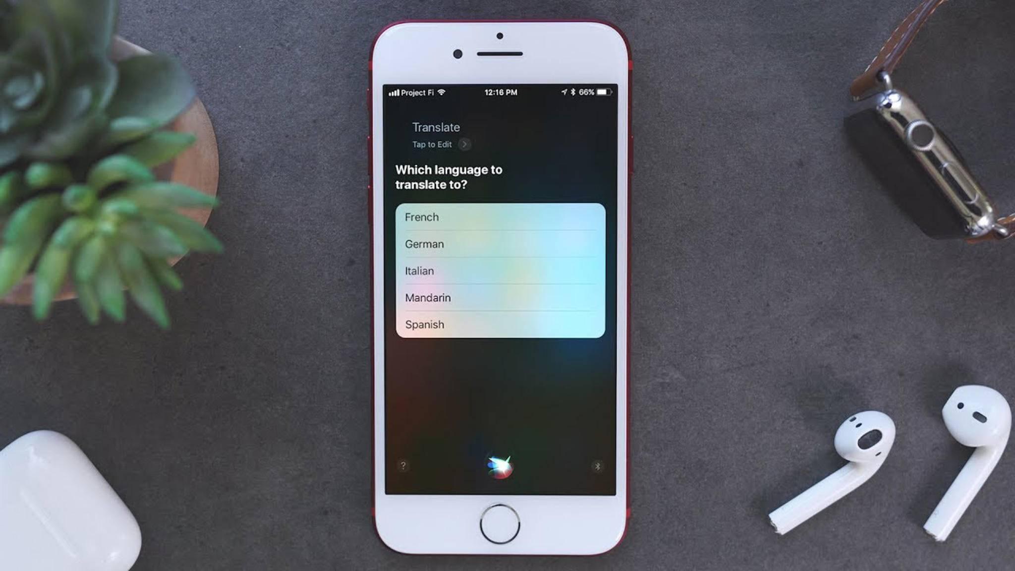 Siri ist auf dem iPhone zuhause.