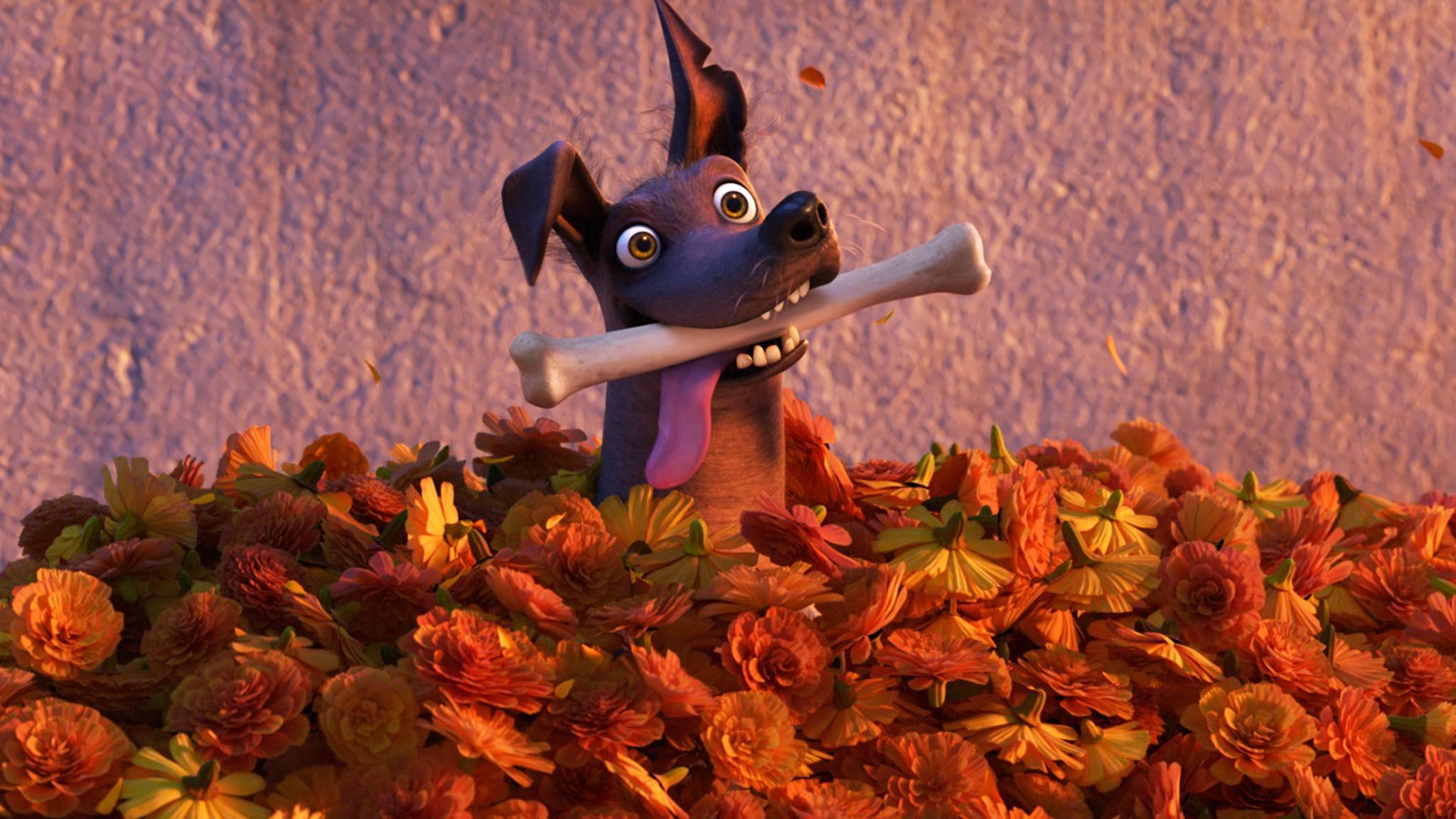 Coco-Lebendiger als das Leben-Dante-Disney-Pixar