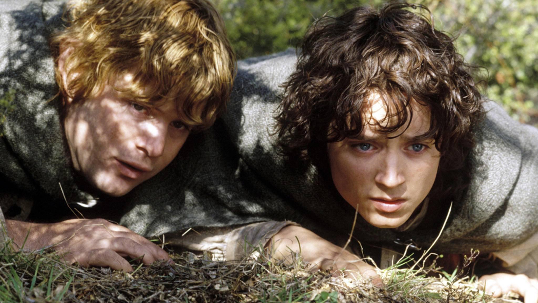 """Gehen Frodo und Sam aus """"Der Herr der Ringe"""" bald in Serie?"""