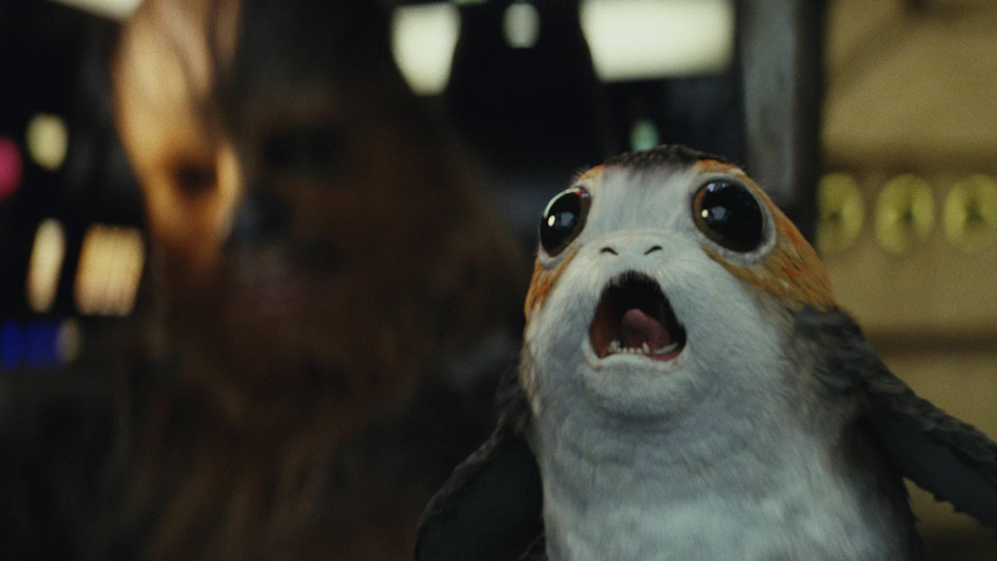 """Schreck lass nach: Noch mehr """"Star Wars""""-Filme?"""