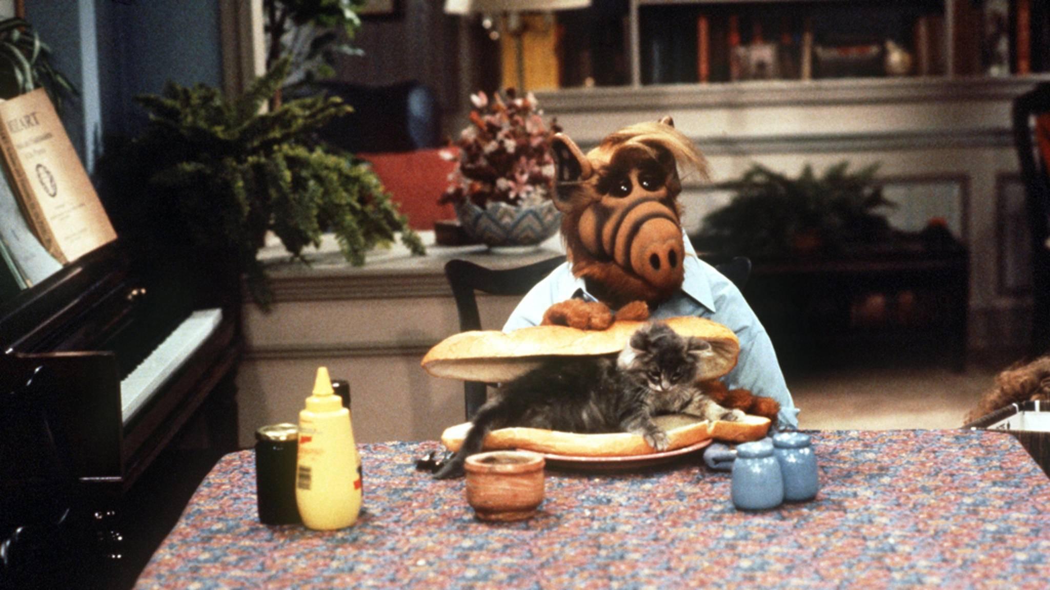 Alf versuchte es immer wieder, die Katze der Tanners zu verspeisen – zum Glück ohne Erfolg.
