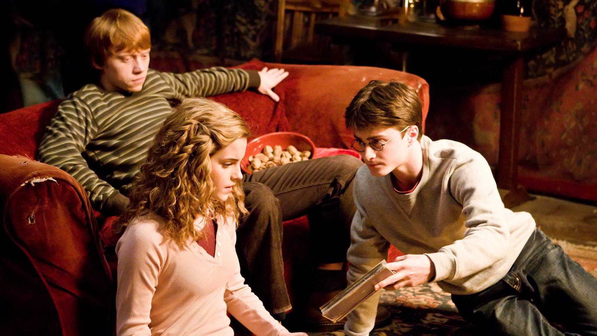 """""""Guck mal, wäre das nicht ein tolles Geschenk für einen 'Harry Potter'-Fan?"""""""