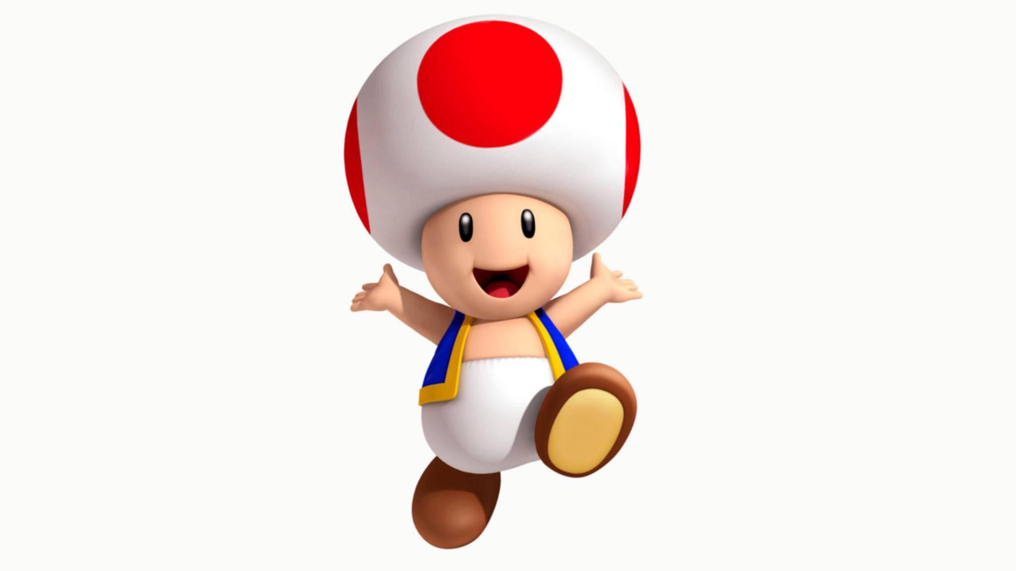 Die Wissenschaft hat festgestellt... ob Toad eine Kopfbedeckung trägt oder einfach einen sehr großen Kopf hat.