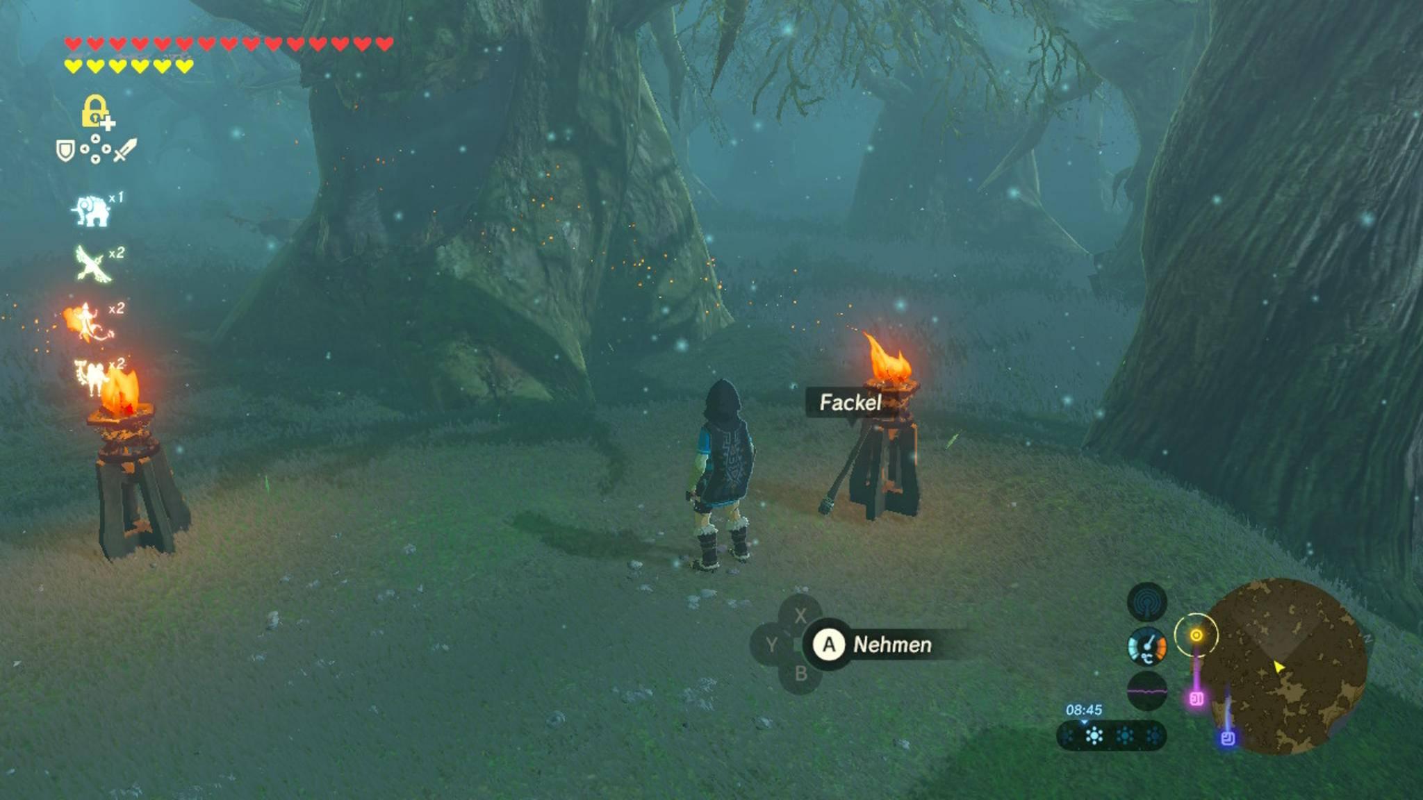 Der zweite Teil des Wegs durch den Verlorenen Wald beginnt bei einer Feuerschale, an der eine Fackel lehnt.