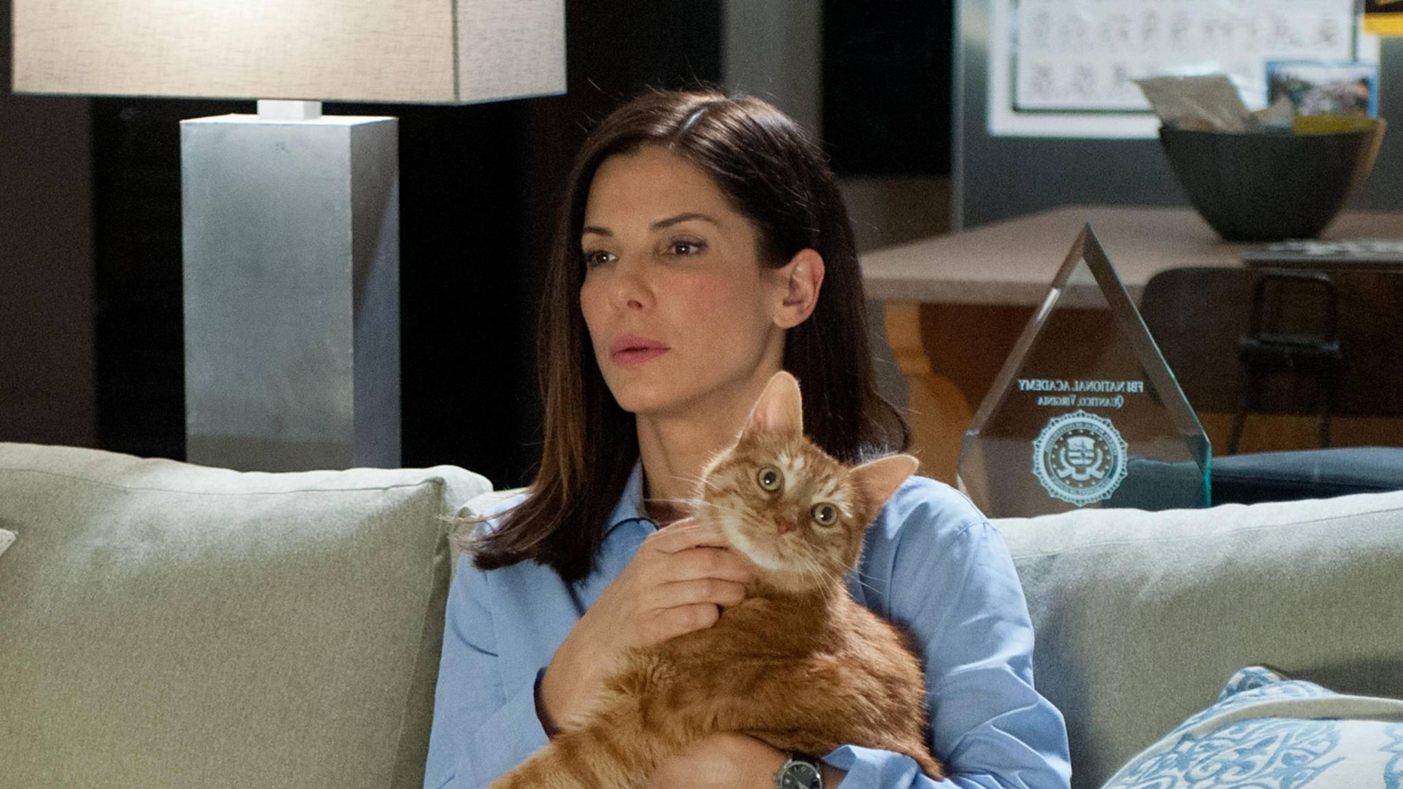 Ein Kätzchen auf dem Schoss bedeutet nicht immer, dass man es mit einem Bösewicht zu tun hat.