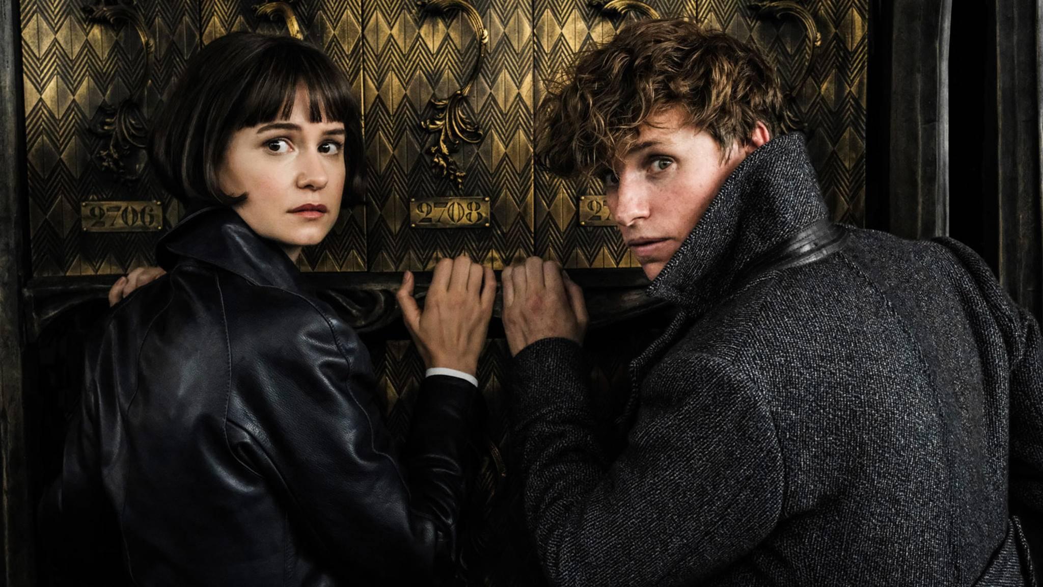 Tina (links) und Newt (rechts) verschlägt es im Sequel nach Paris.