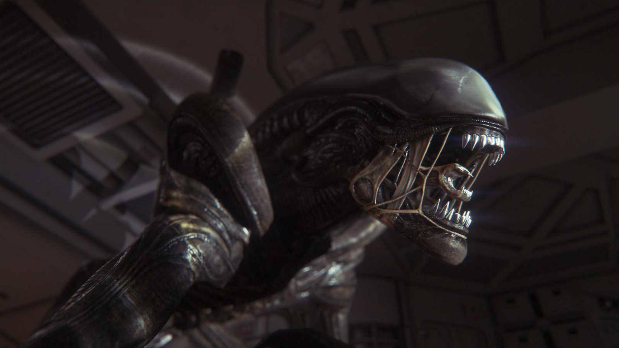 Neues Alien-Spiel bei Iron Cold in Entwicklung