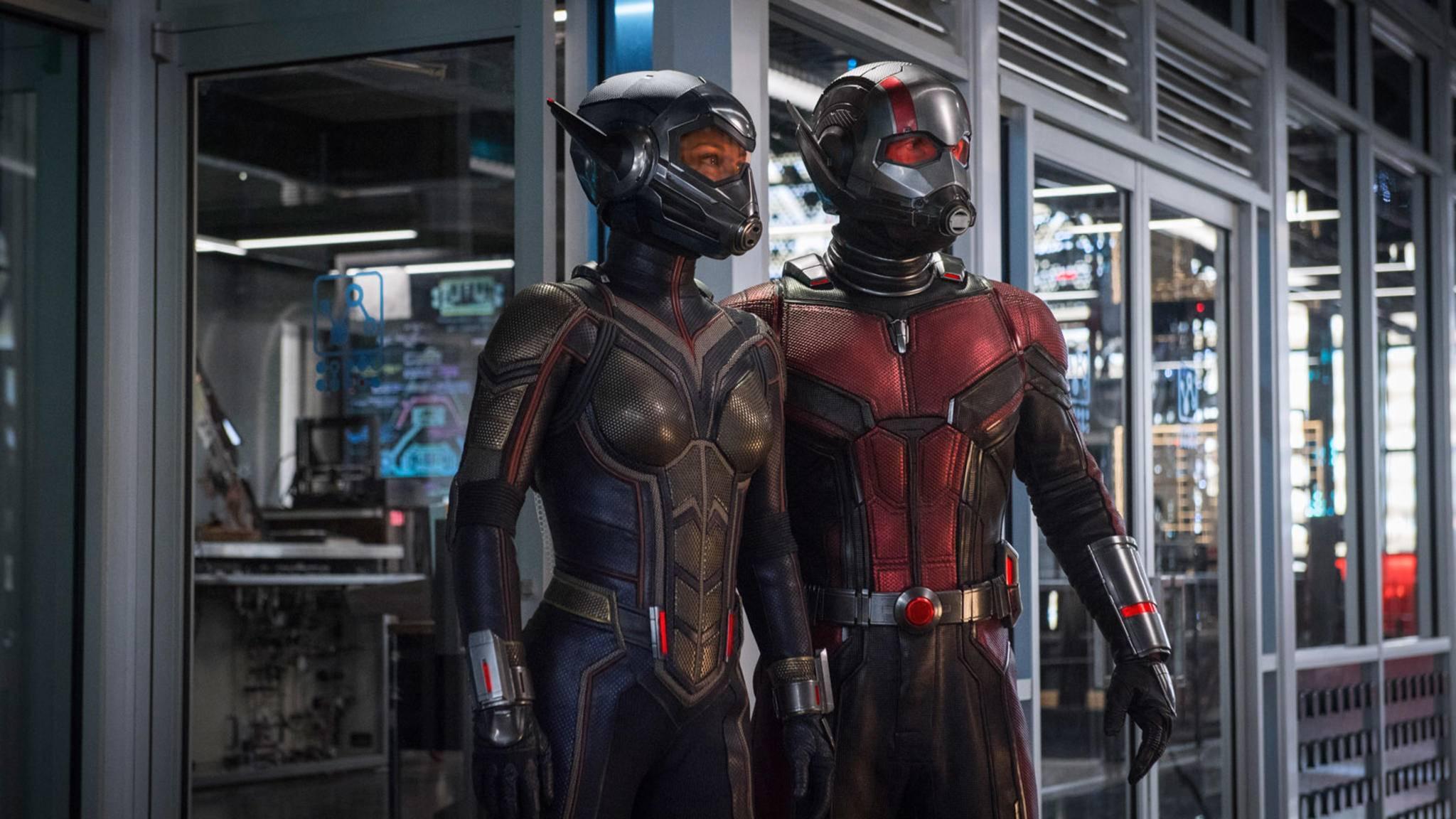Sind nach 1963 jahrelang im Doppelpack unterwegs gewesen: the Wasp und Ant-Man.