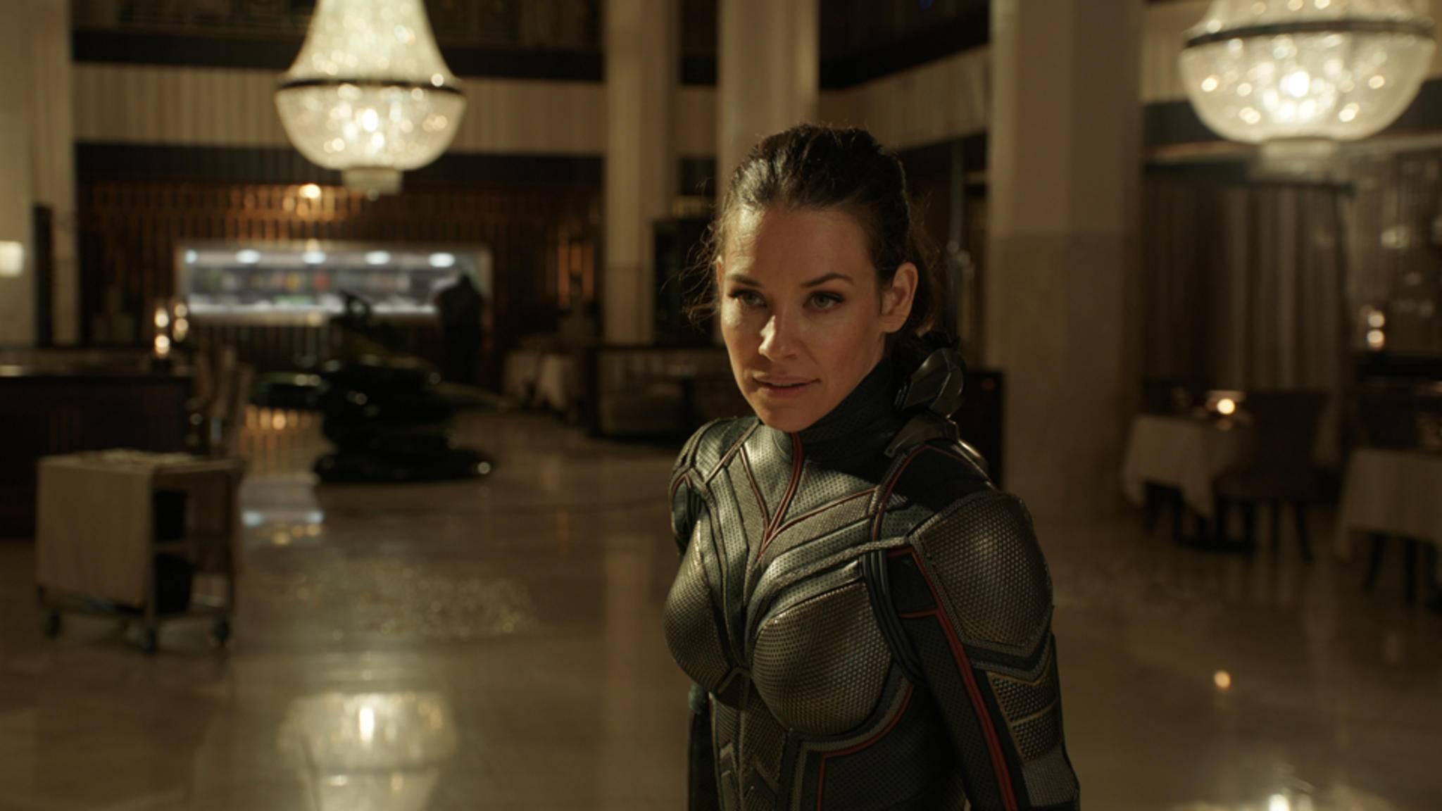 Allein wird the Wasp (Evangeline Lilly) in naher Zukunft wohl nicht in den Kinos landen.