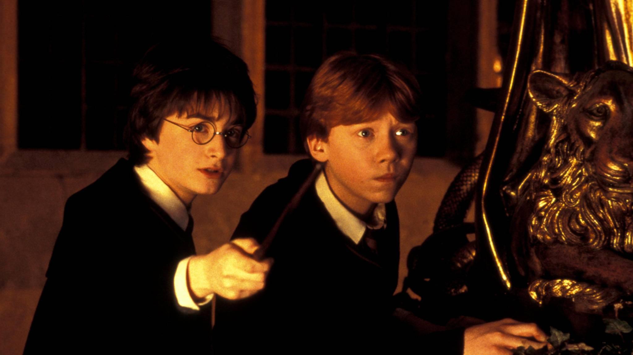 Harry und Ron meistern die Schule vor allem mit vielen Zaubersprüchen.
