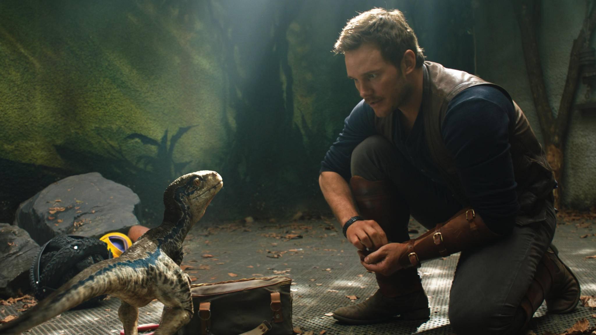 Chris Pratt darf bald wieder mit Dinos spielen.